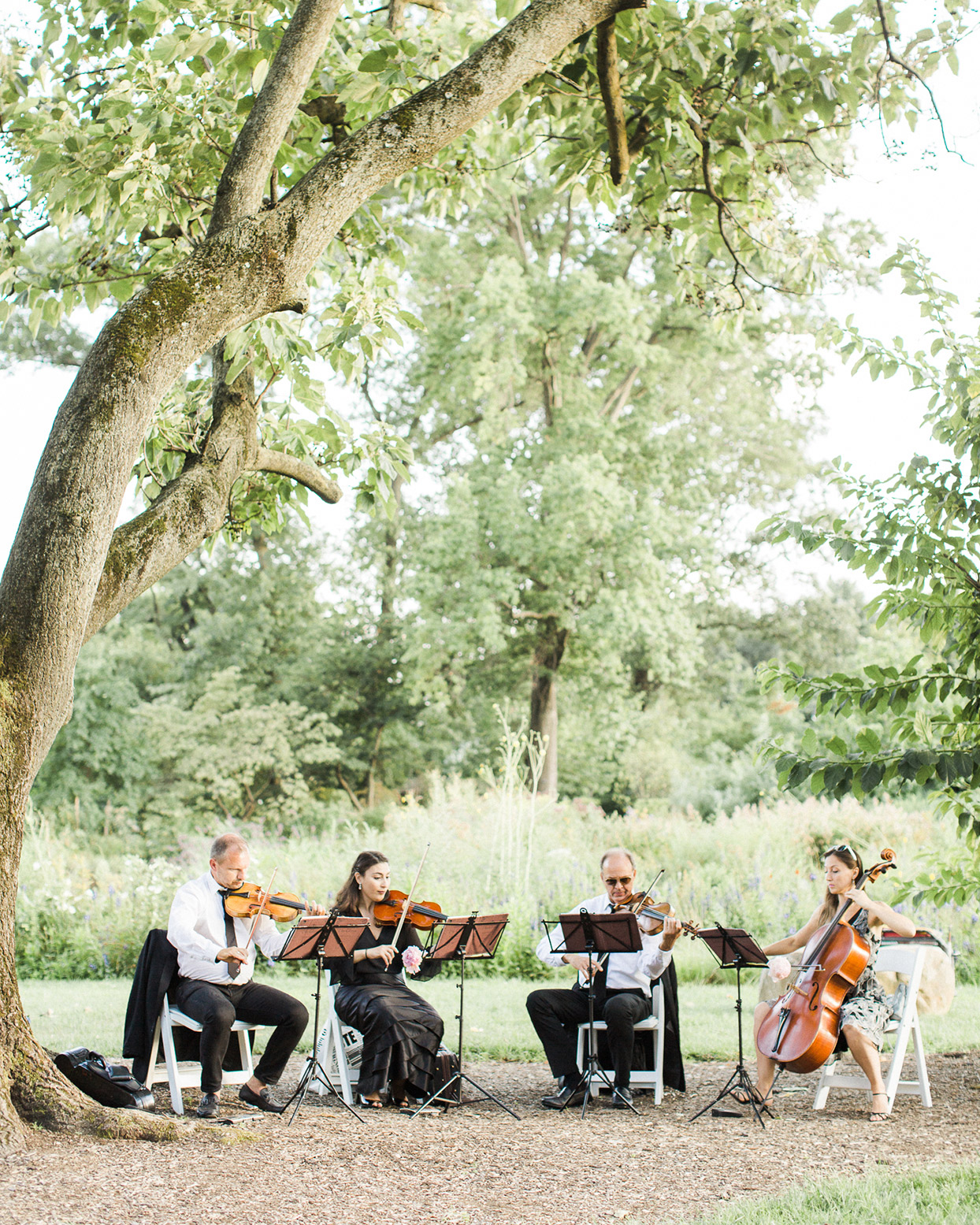 grace john wedding string quartet playing under tree