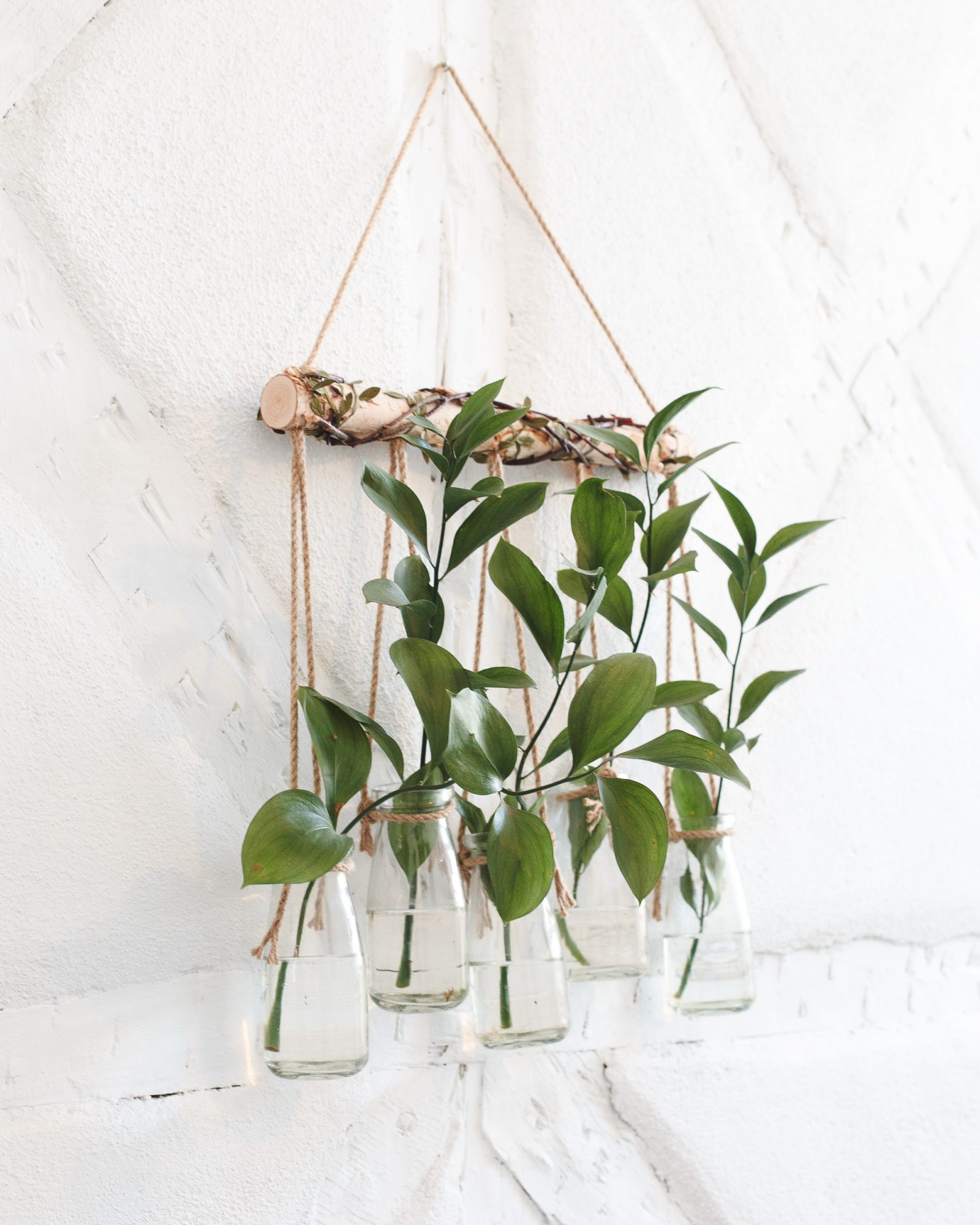 wall planter with hanging plants