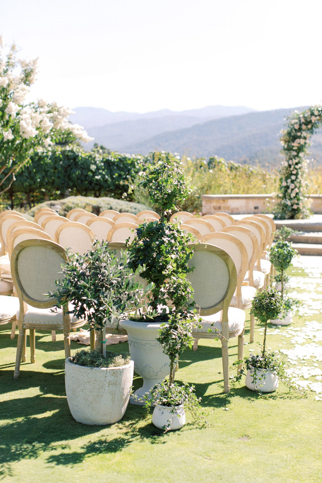 chairs and plants in outdoor ceremony space