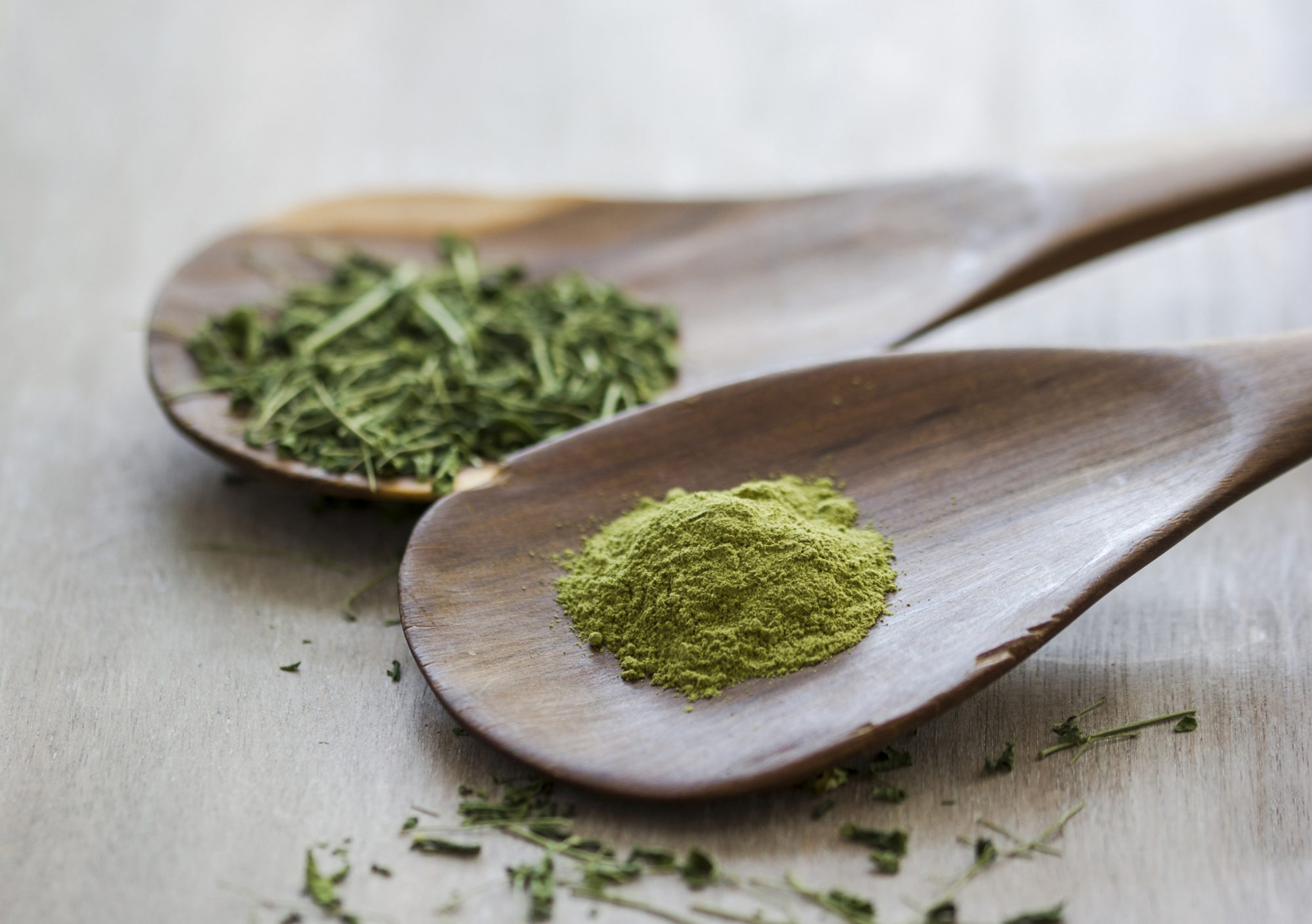 What Is Moringa? Your Guide to This Buzzy Nutritional Supplement