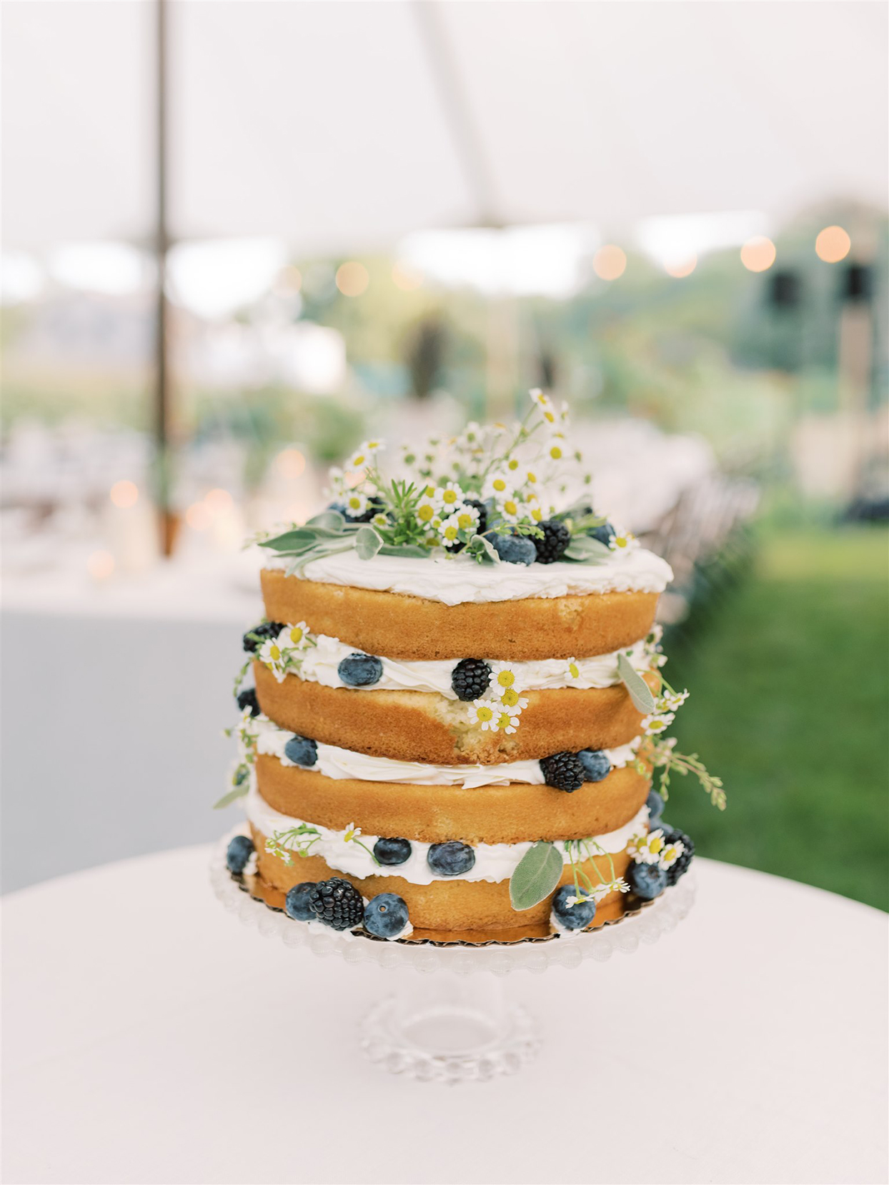 samantha cody wedding naked layer cake with blue and blackberries