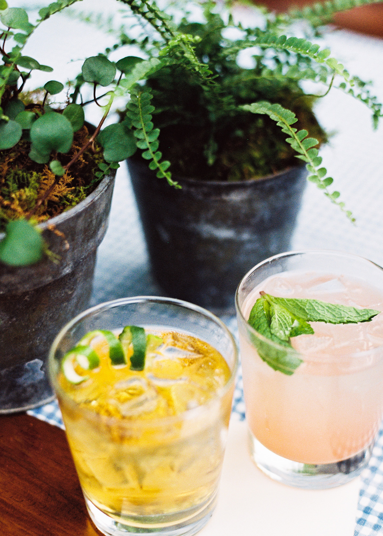 cocktails on table with plants at welcome party