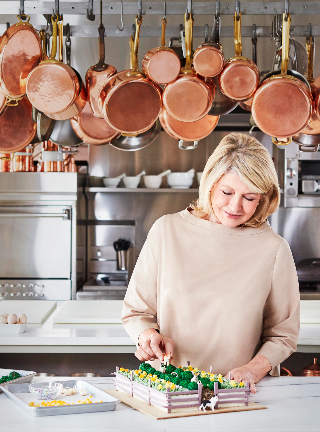 martha stewart in kitchen with farm cake