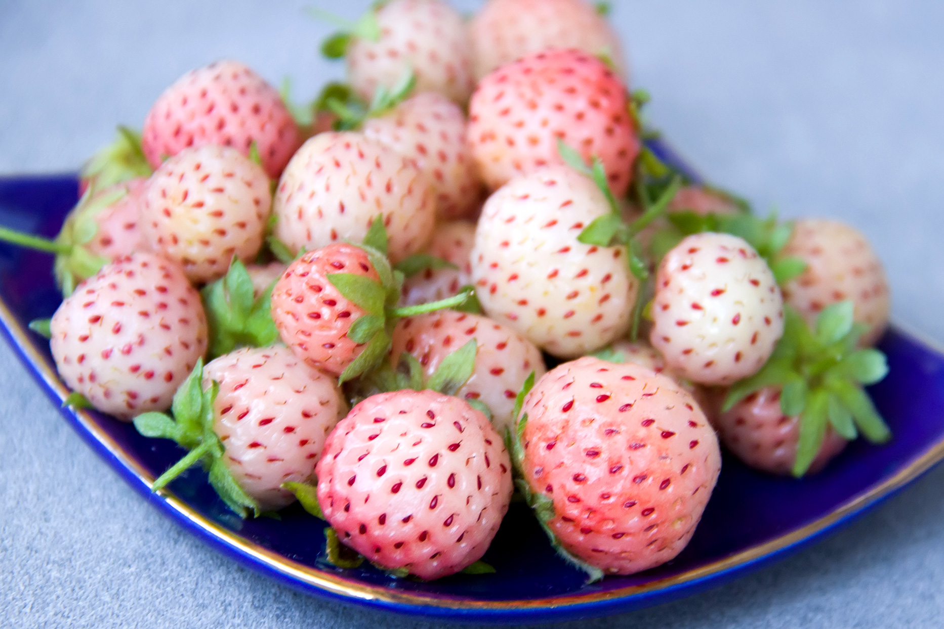 pile of pineberries