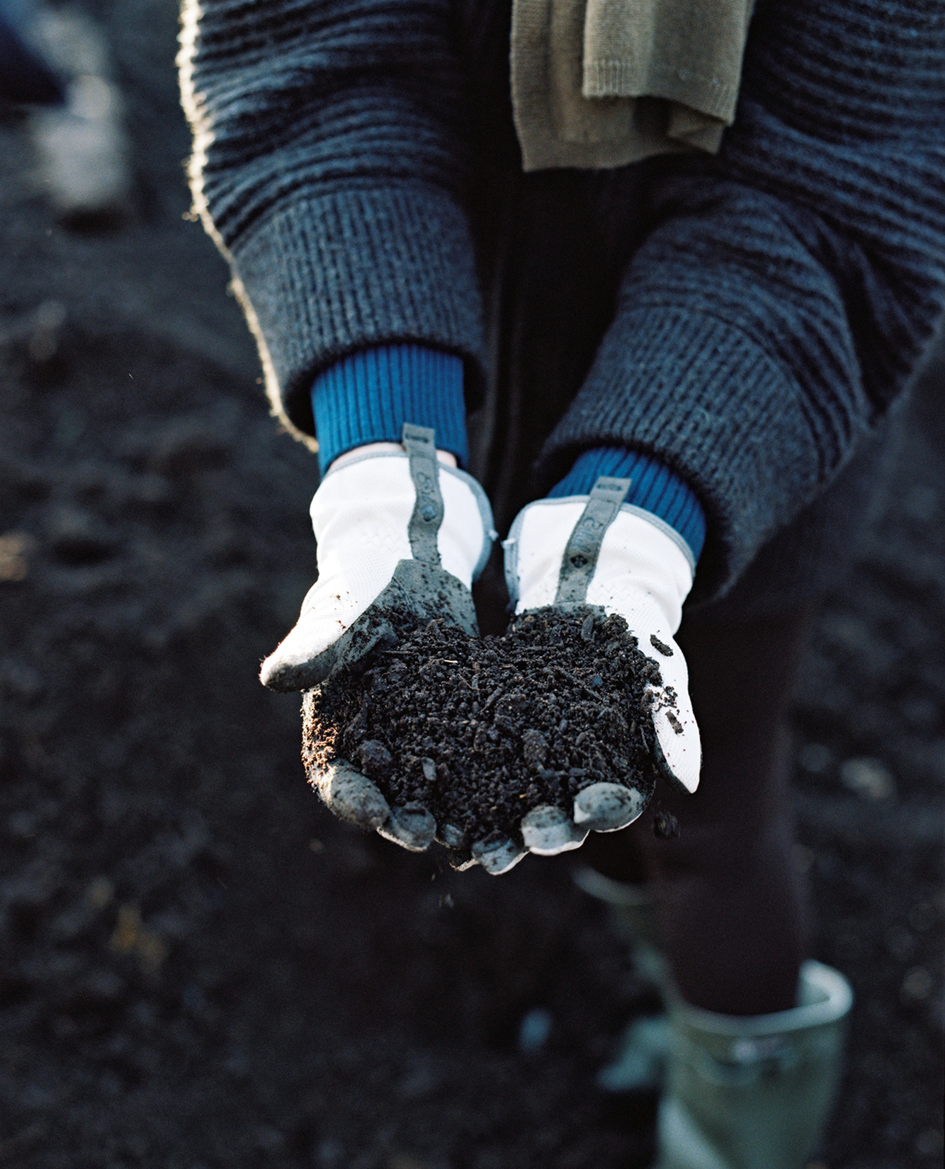 hands cupping soil