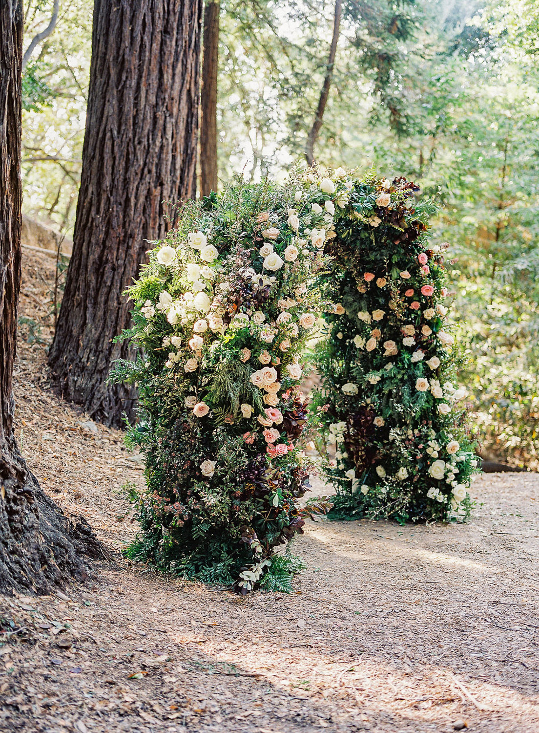 large floral ceremony arch in front of red wood tree