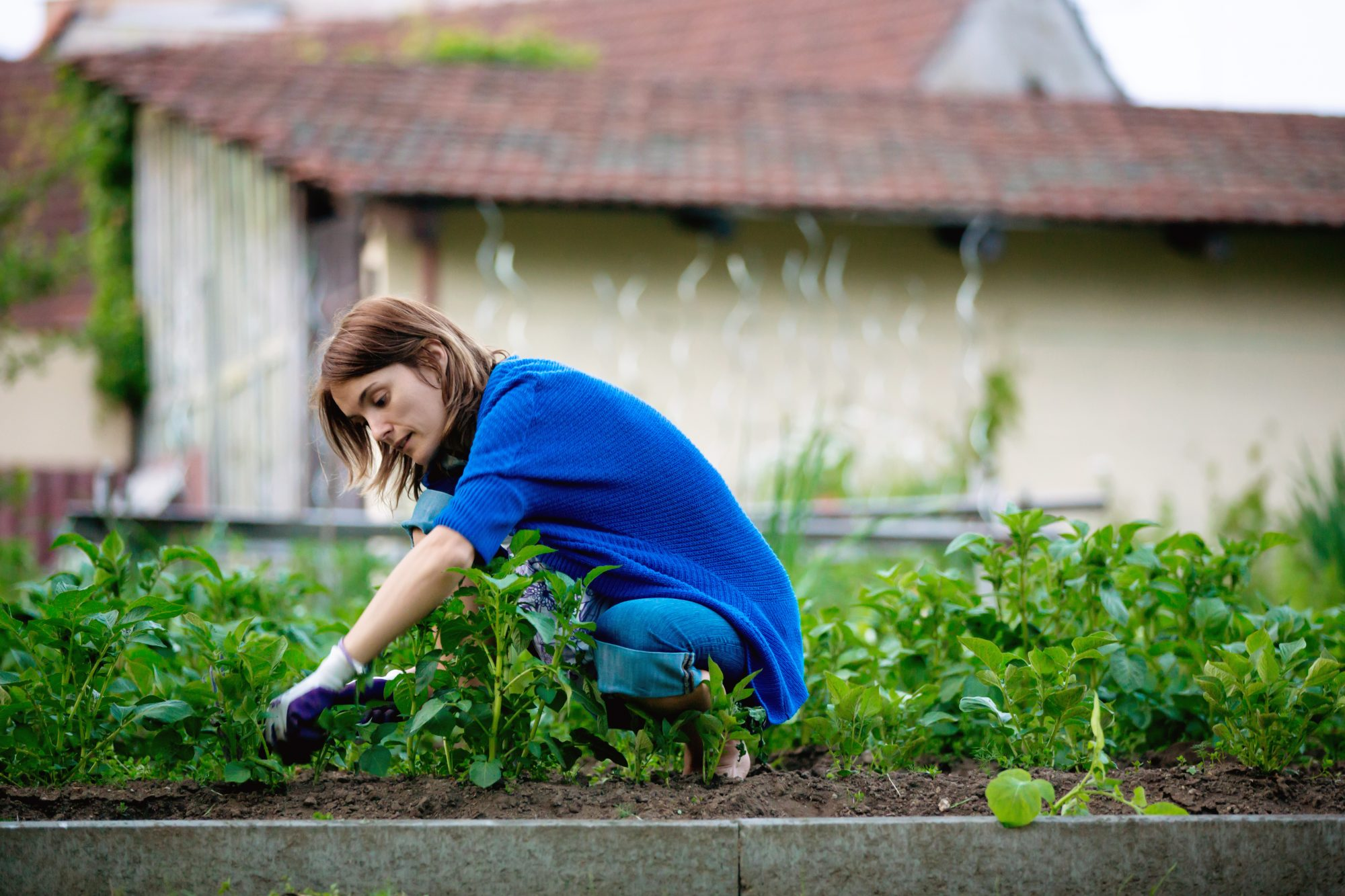 woman weeding in garden