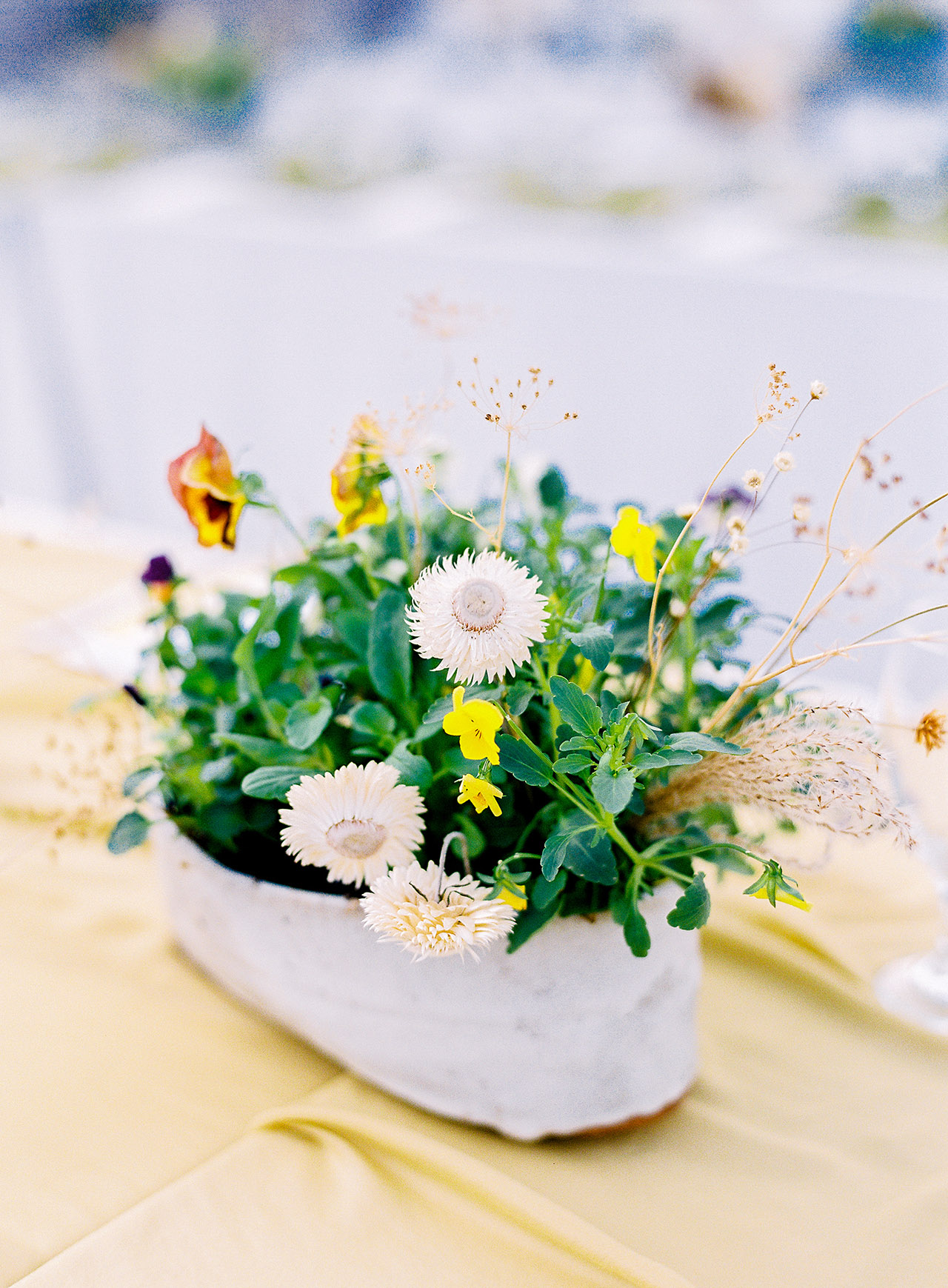 The Planted Centerpieces