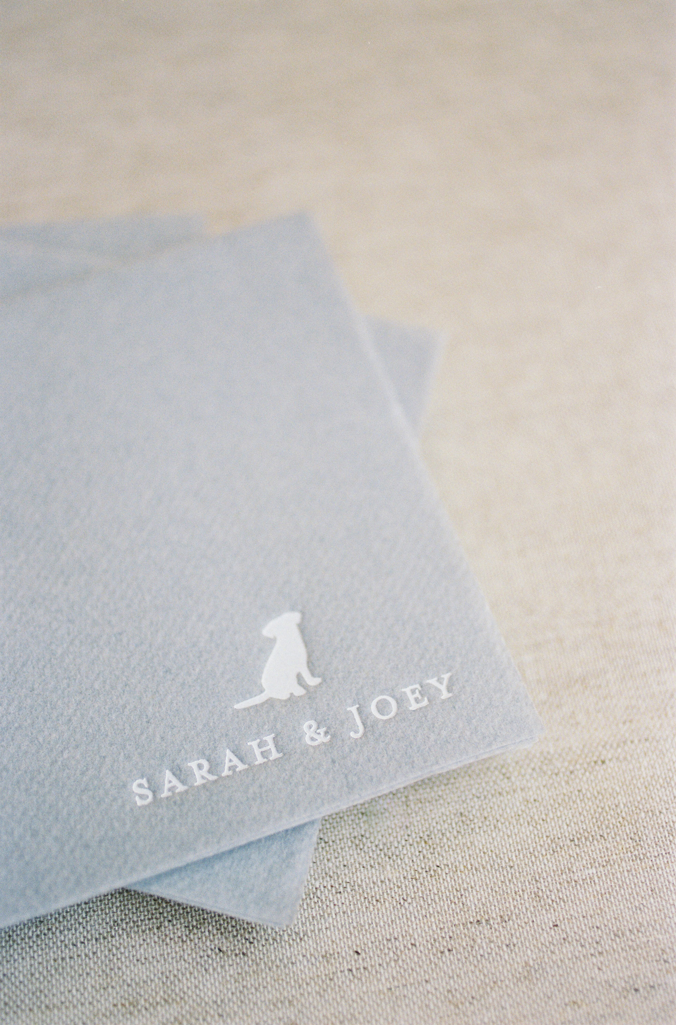 gray save the dates with dog icon and couple's names