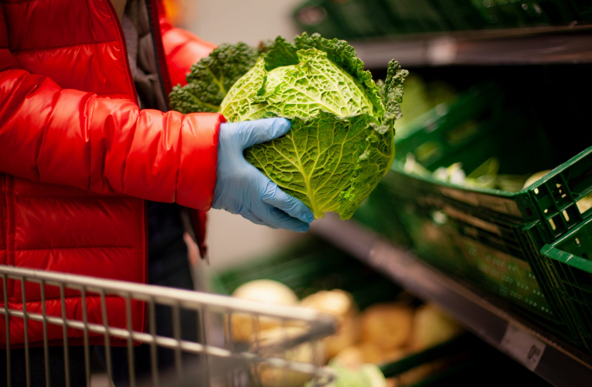 Woman picking out savoy cabbage at the supermarket, wearing protective gloves