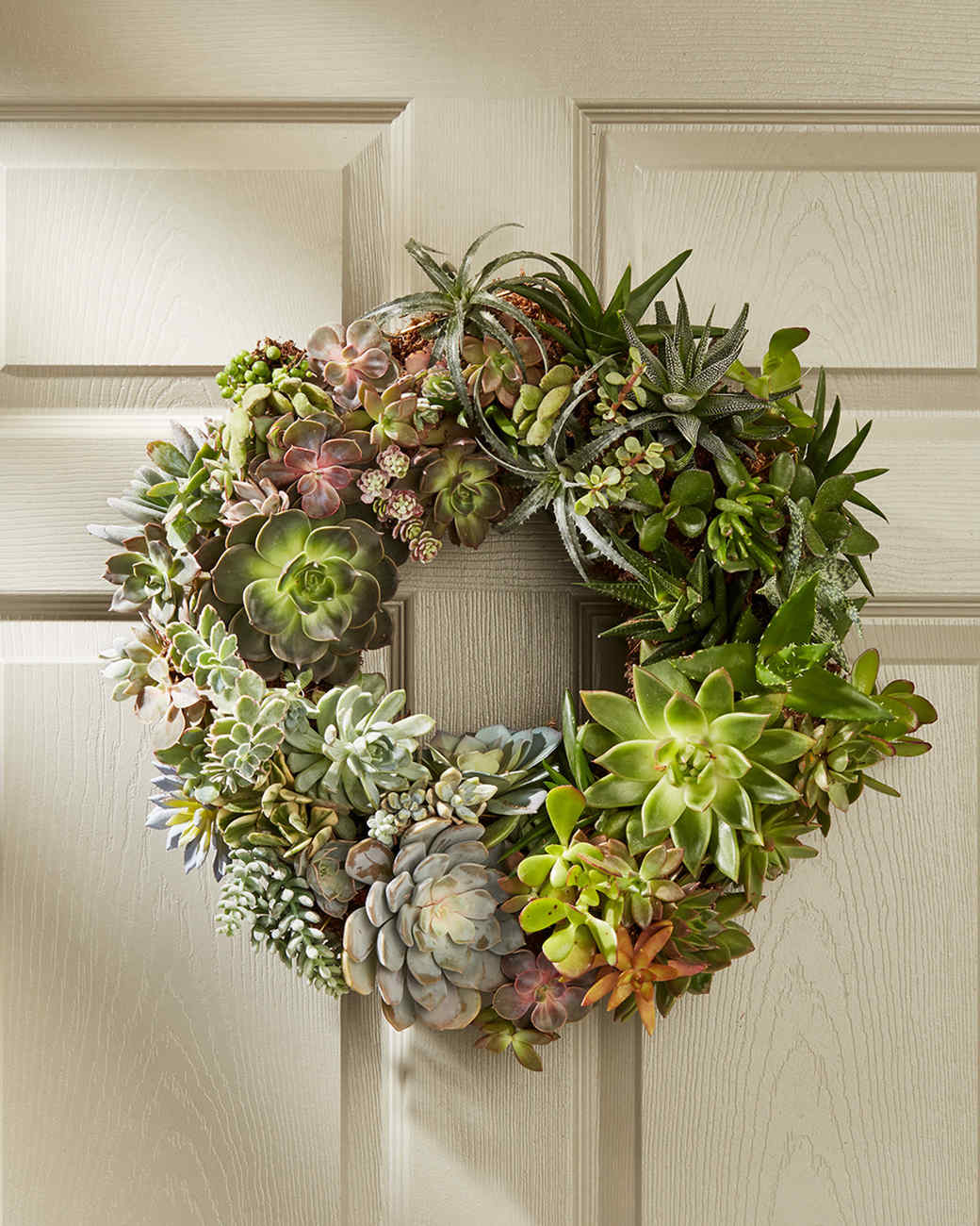 wreath out of succulents