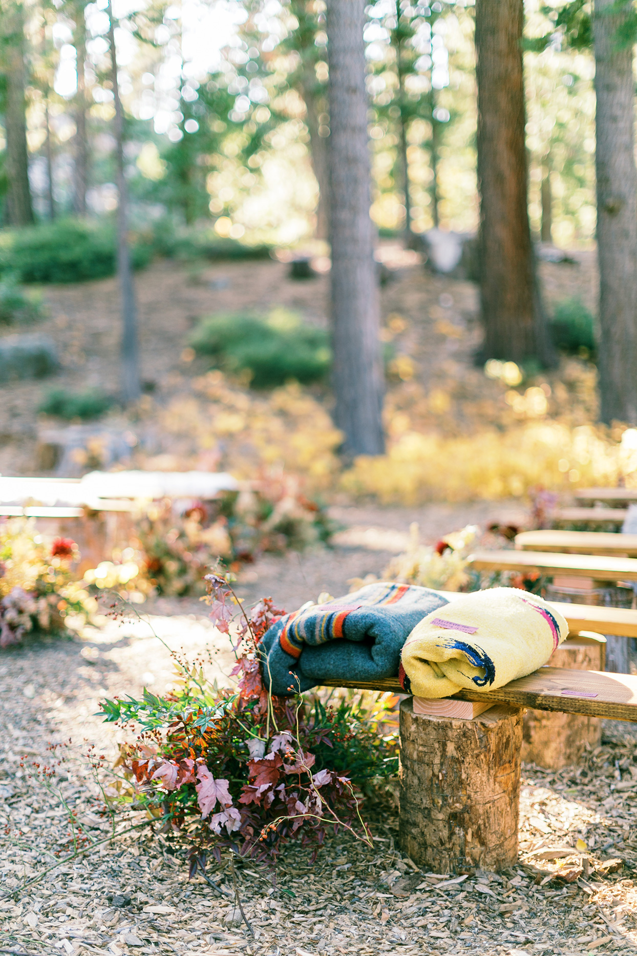 rustic outdoor ceremony wooden benches with fall colored blankets