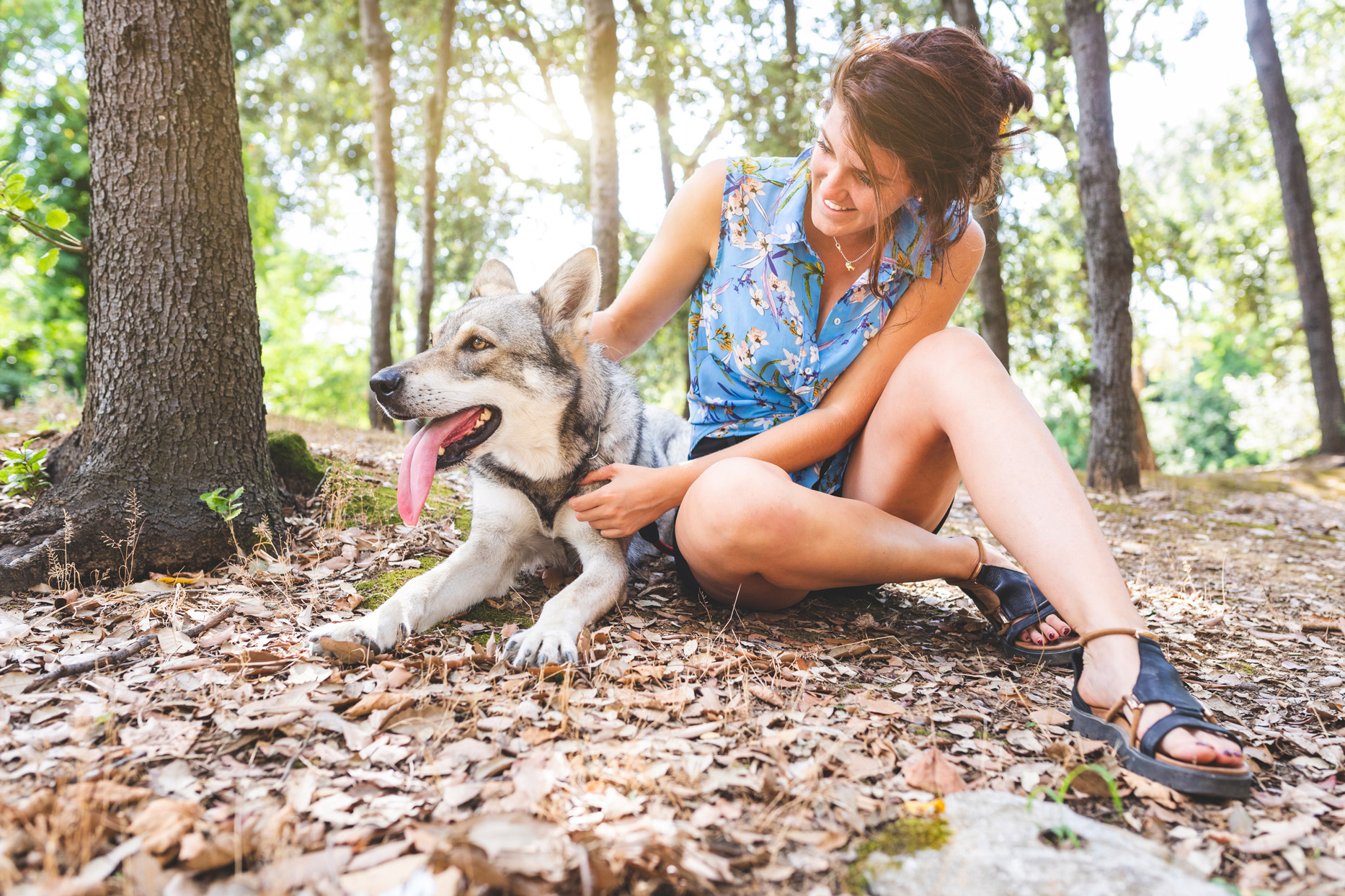 woman hiking with dog in the woods
