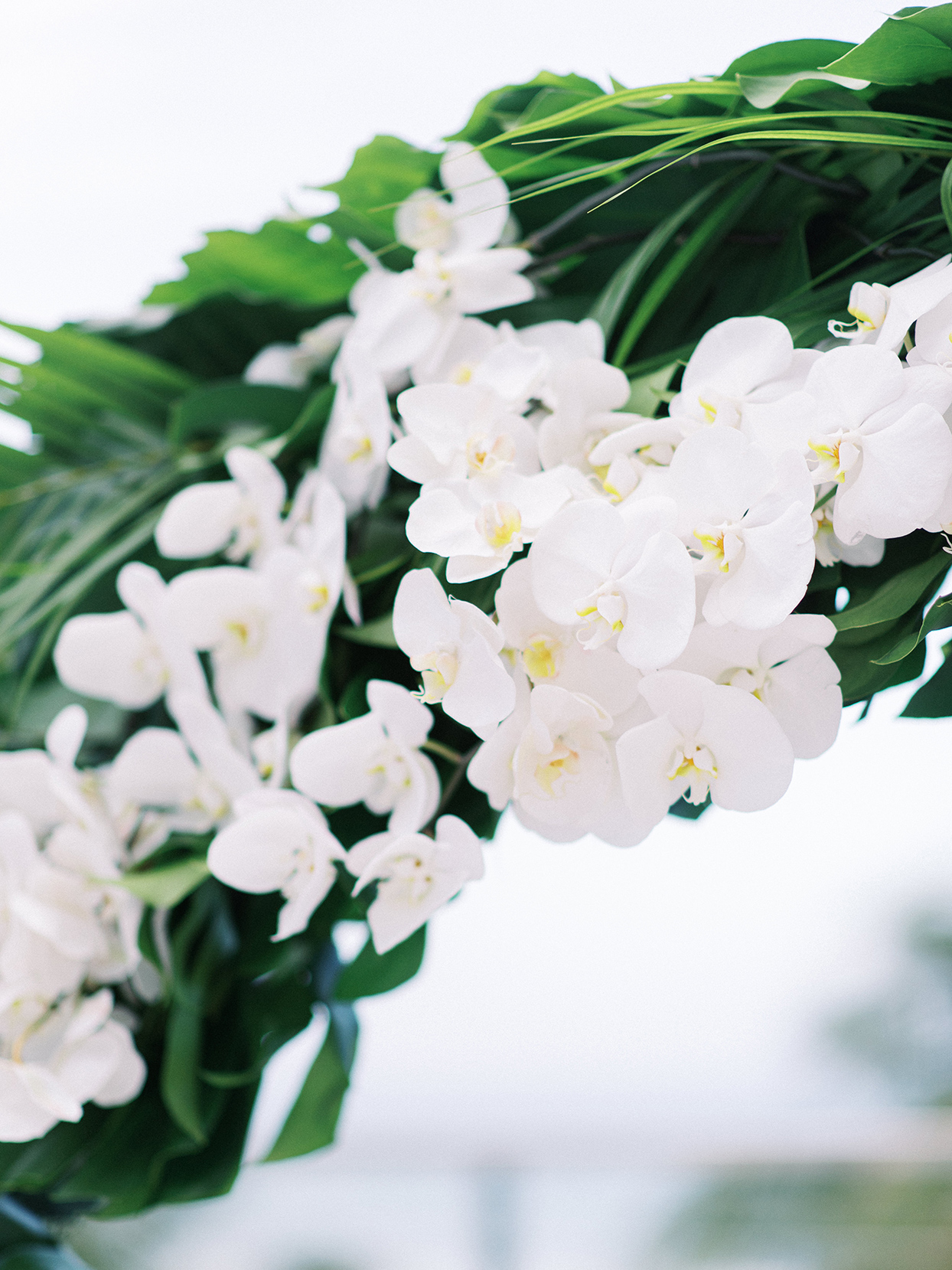 wedding flowers of white orchids and green fronds