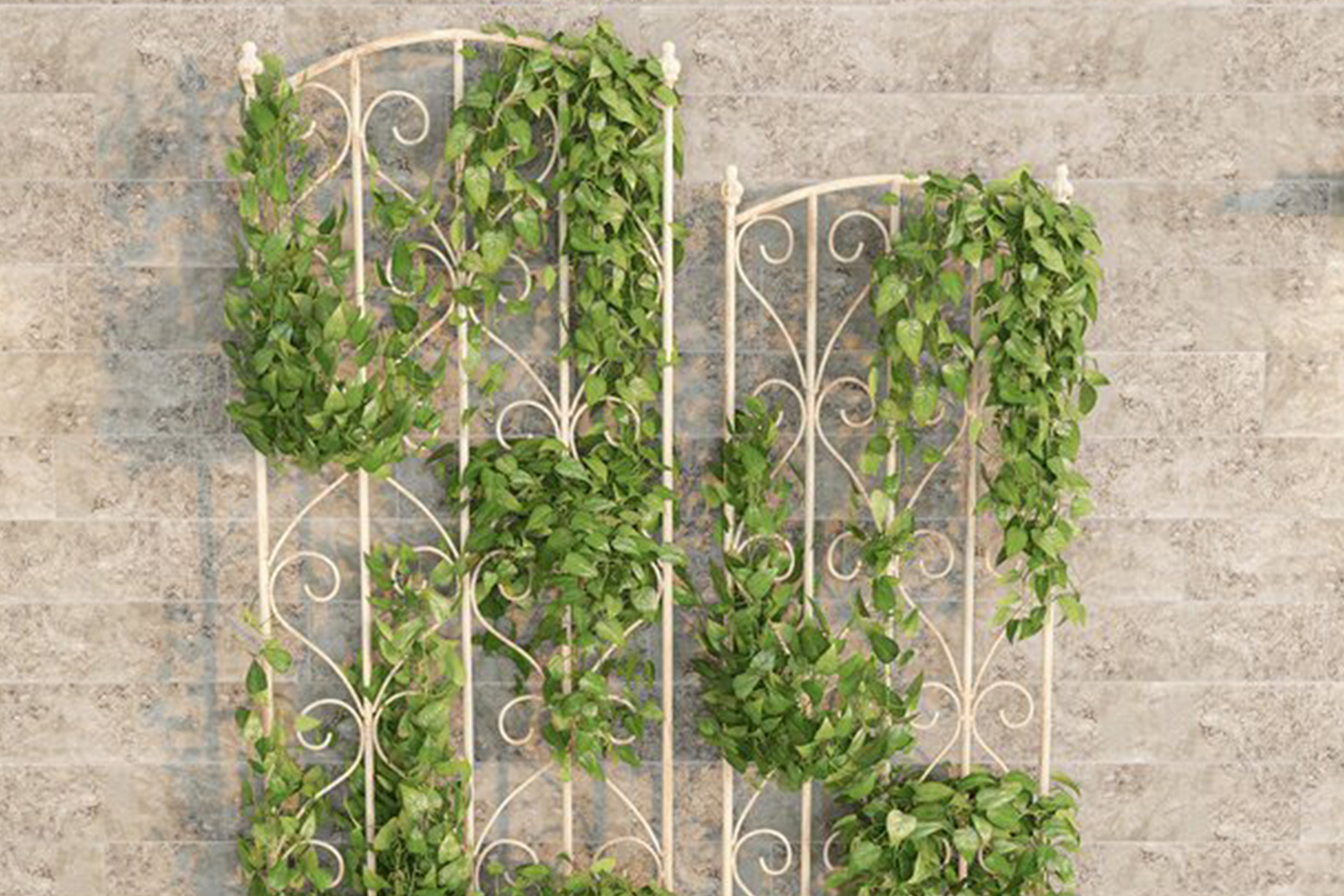 Climbing Plants Steel Arched Trellis Set