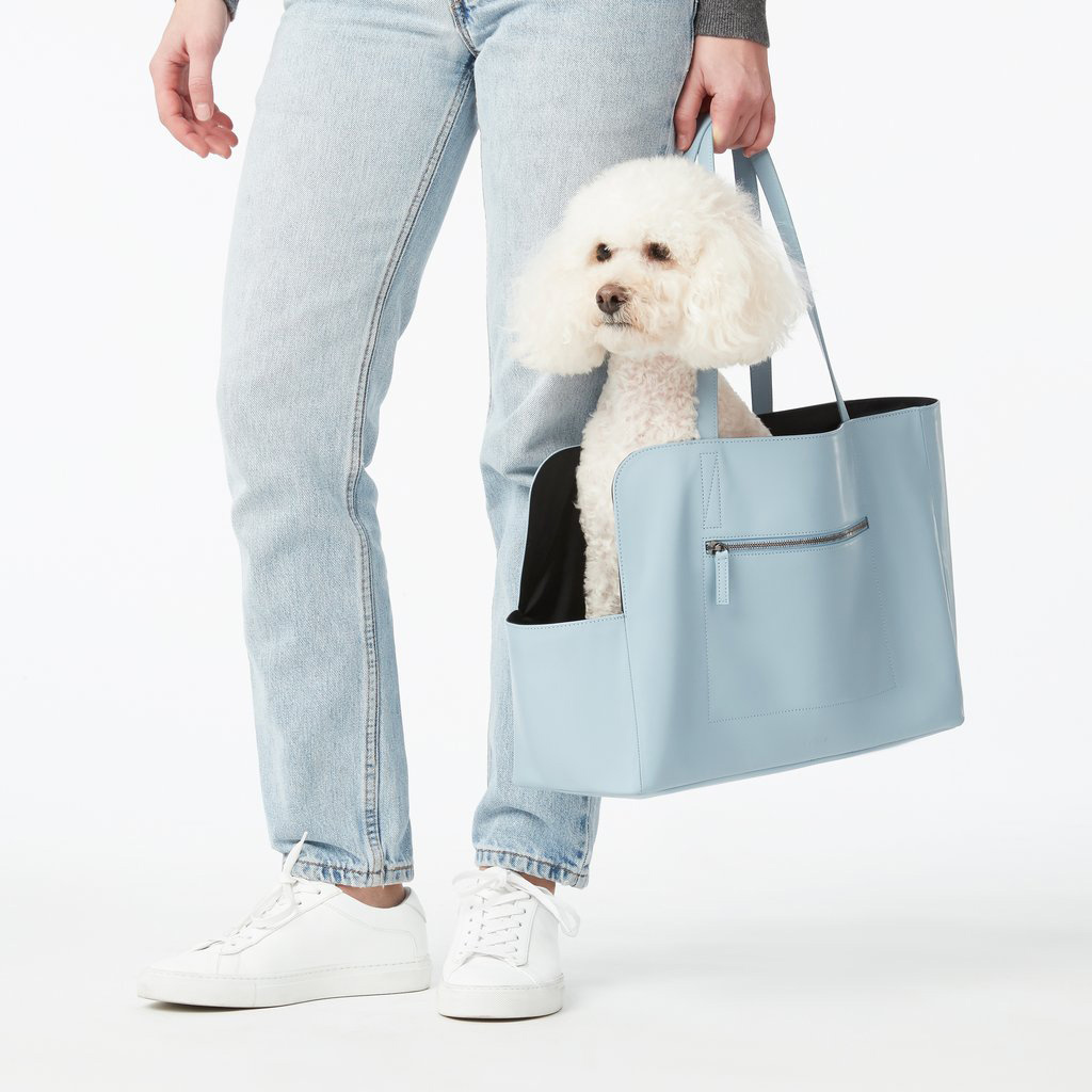 woman carrying white poodle in light blue Fable Pets Carrier