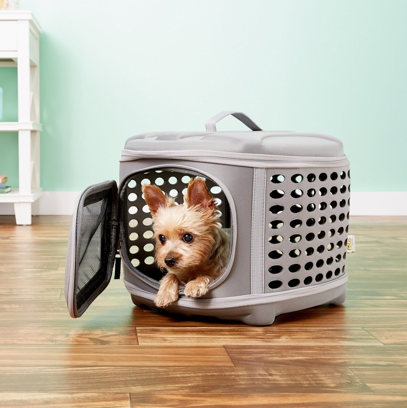 small dog inside Pet Magasin Collapsible Dog & Cat Carrier Bag