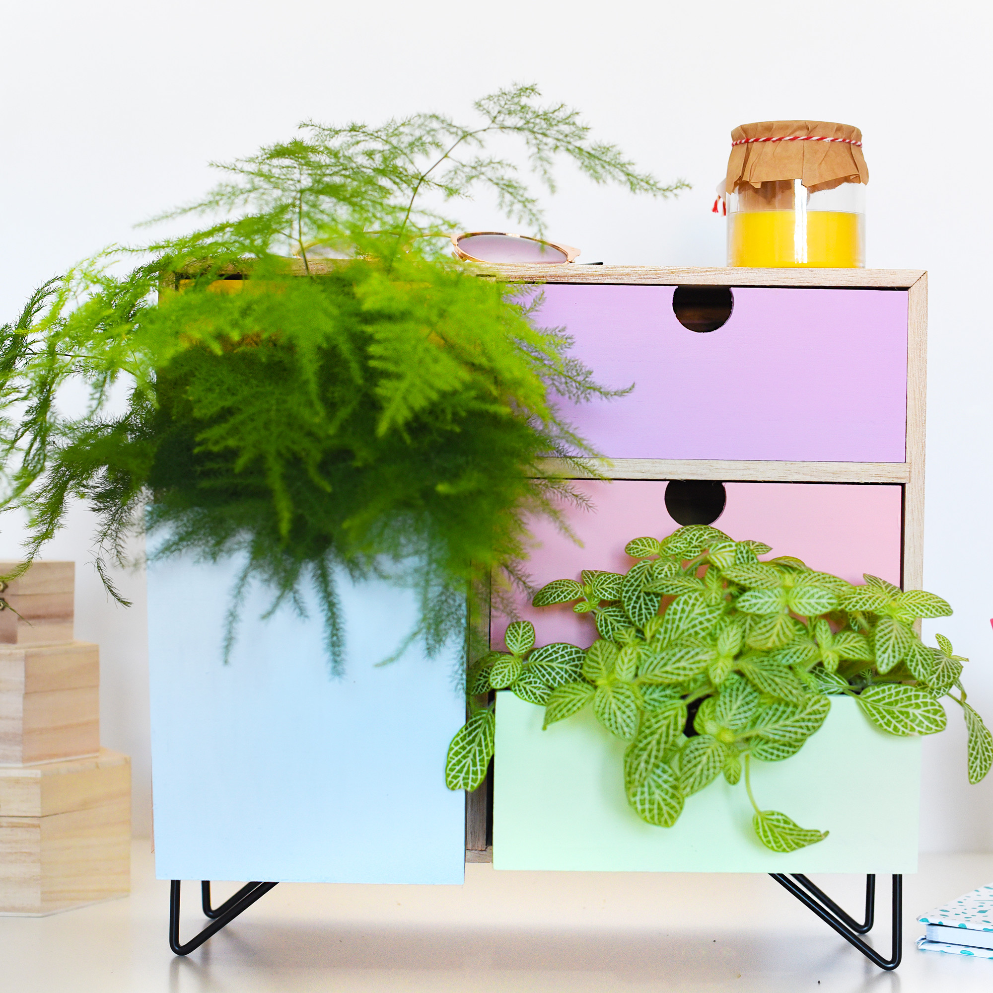 chest of colorful drawers filled with plants