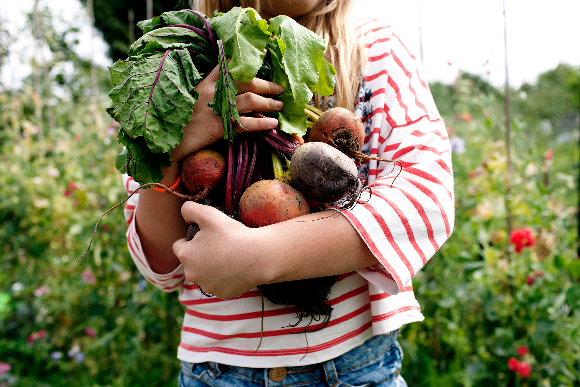 Child holding beets