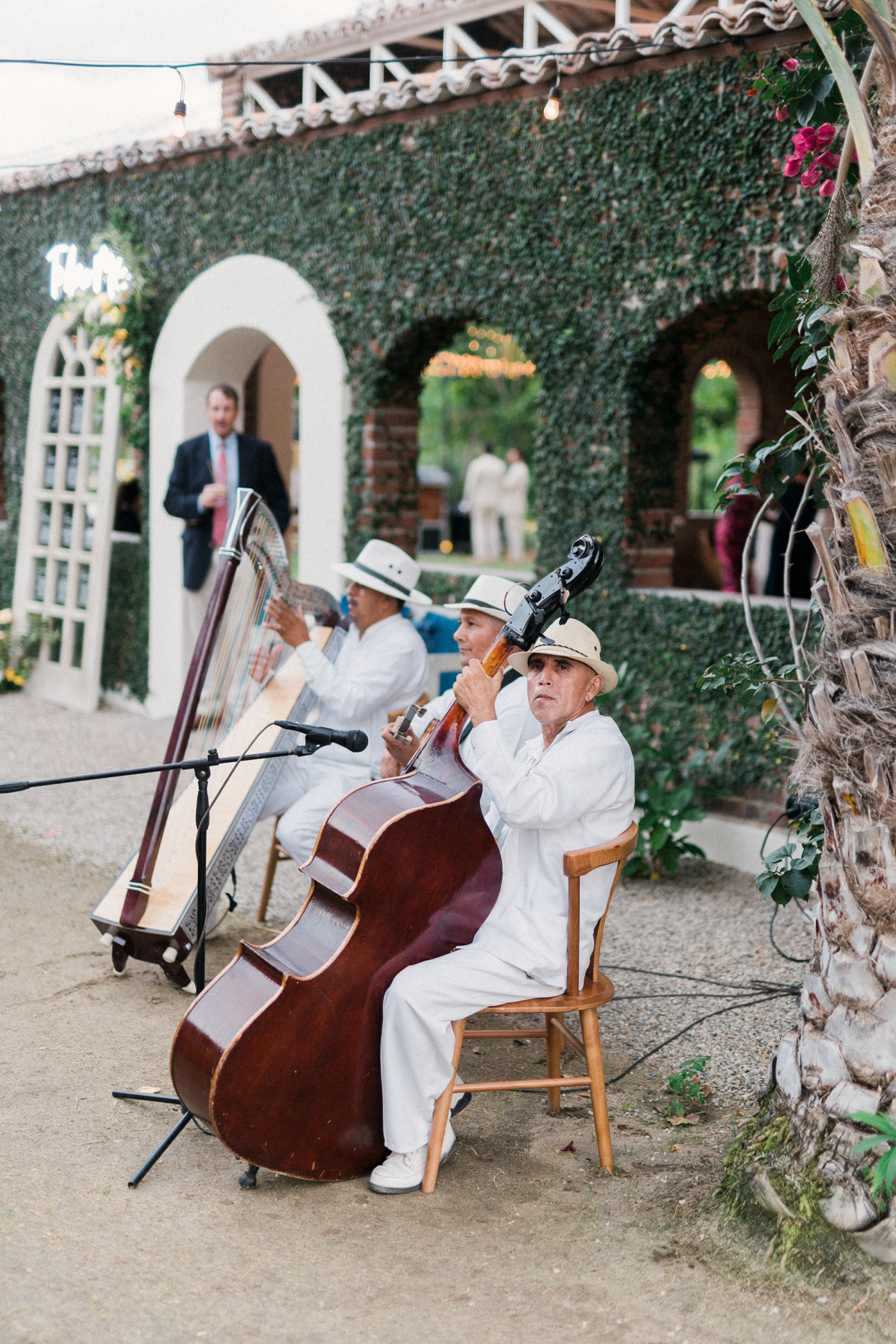jazz trio sitting outdoors with upright bass, guitar, and harp