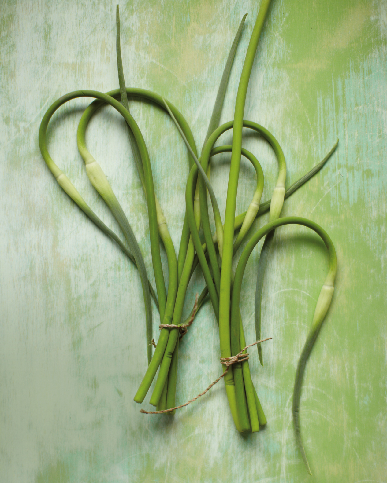 bunches of garlic scapes