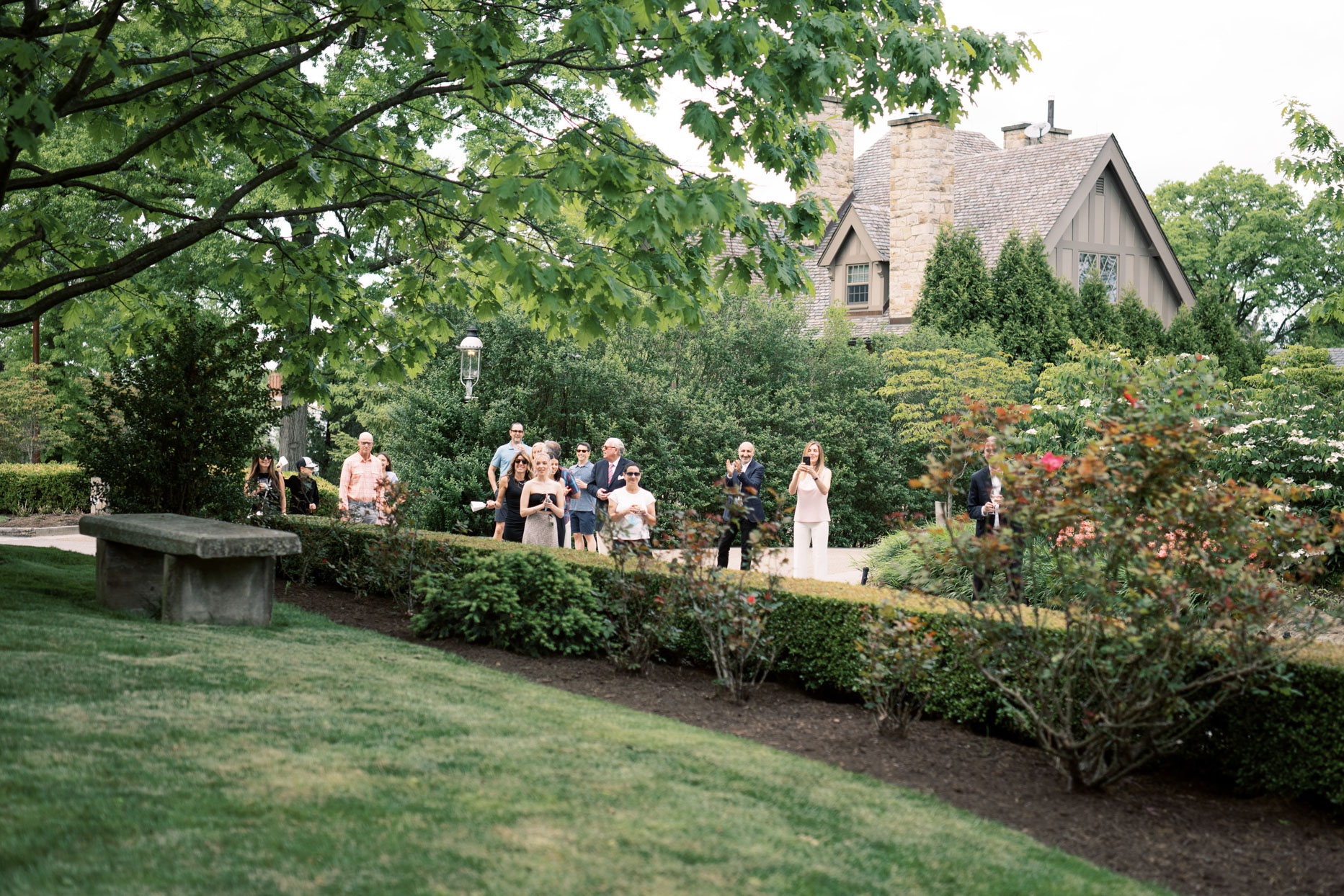guests watching from a distance over garden hedge