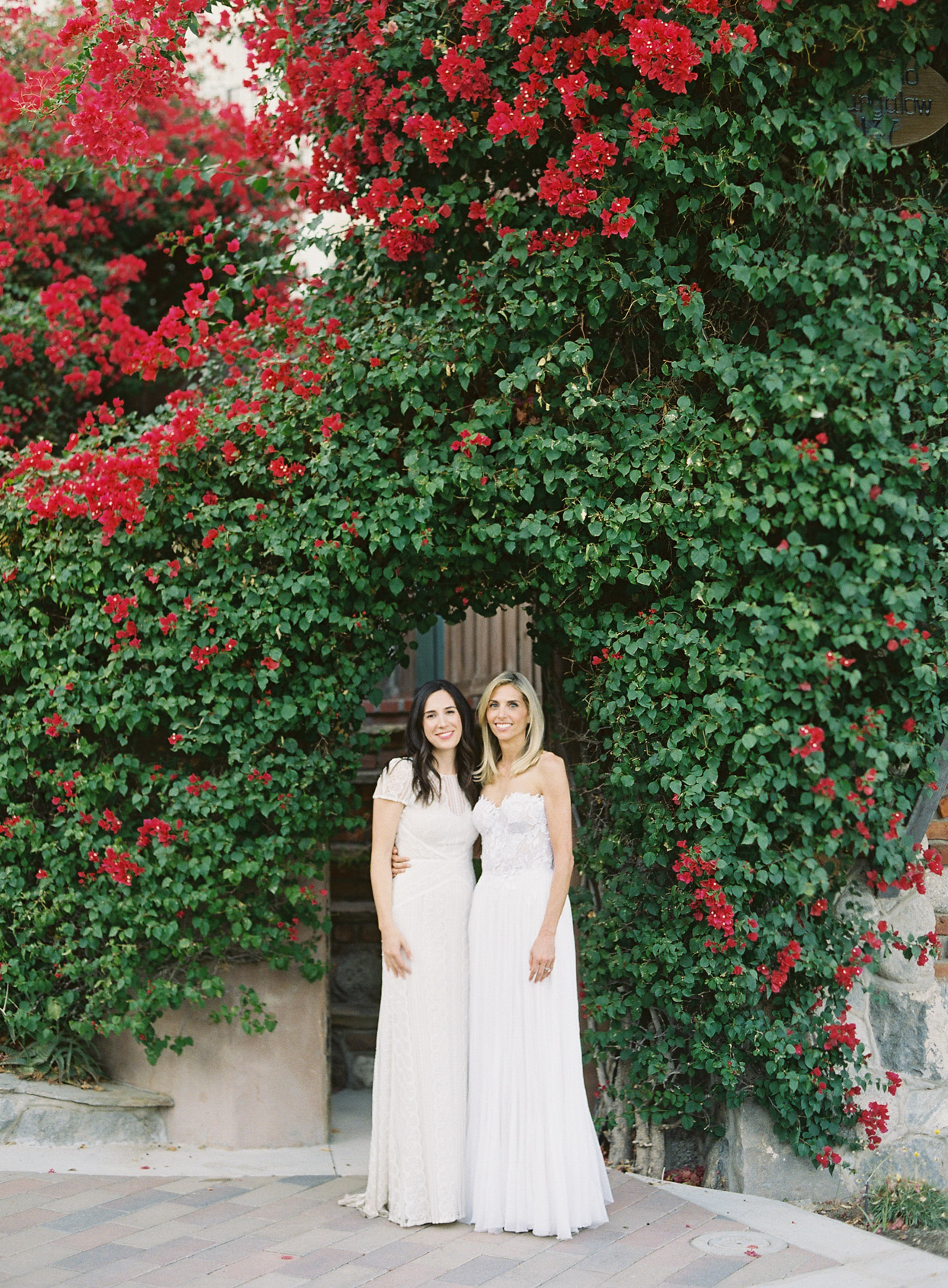 wedding couple posing under greenery wall with red flowers