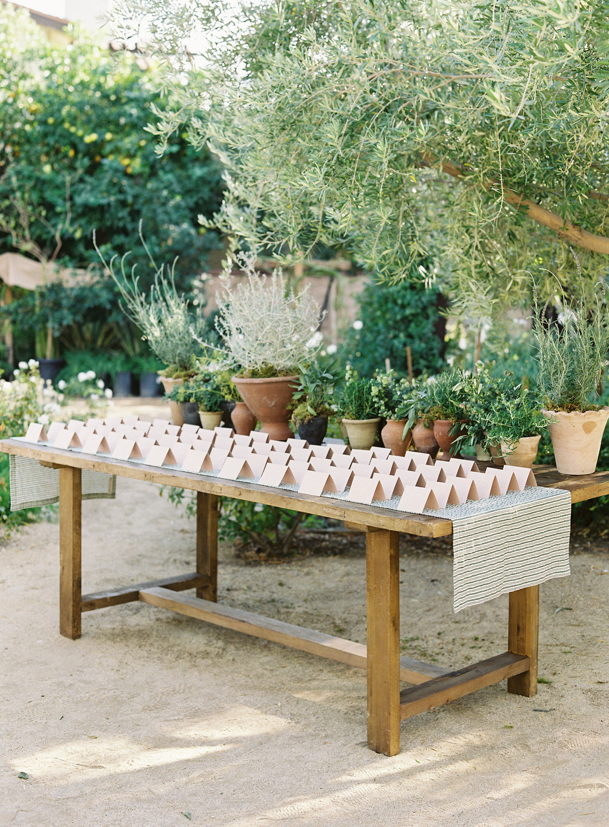 escort cards on wooden table outdoors surrounded by greenery