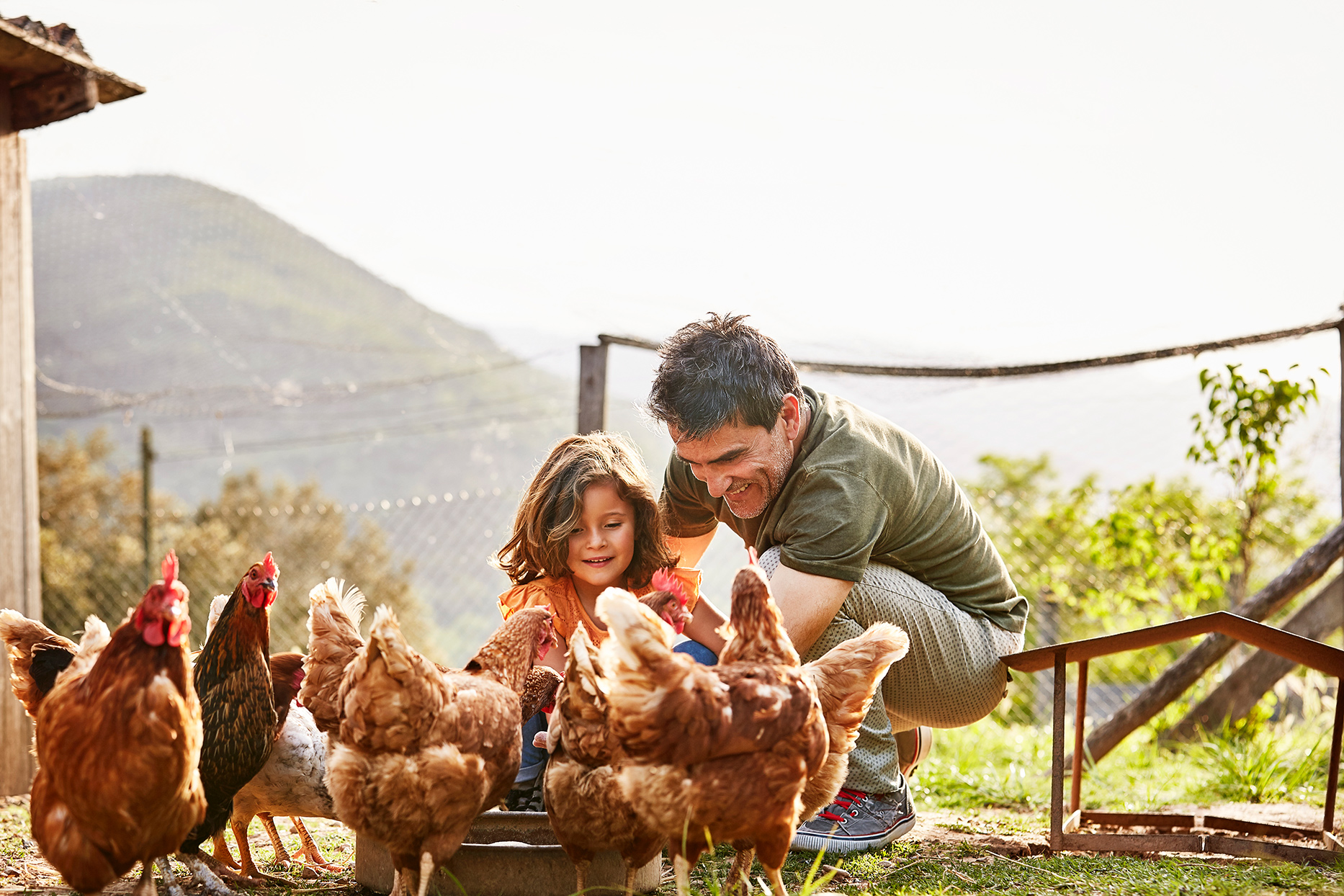 father and daughter feeding chickens in coup