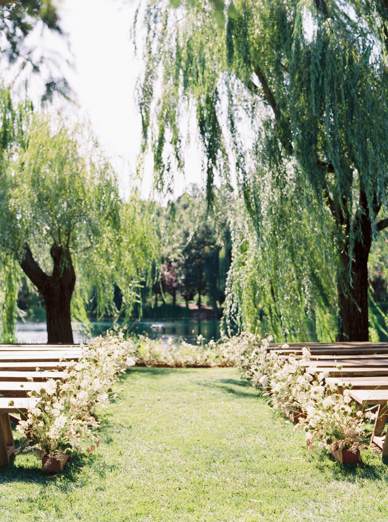 outdoor ceremony setting willow tree backdrop by pond