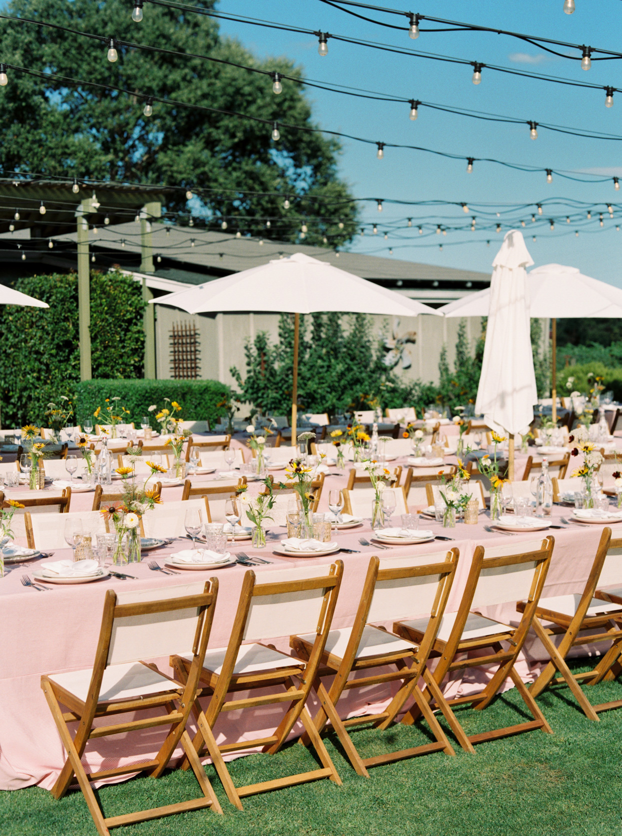 welcome party tables set up on lawn with pink cloths and yellow flowers