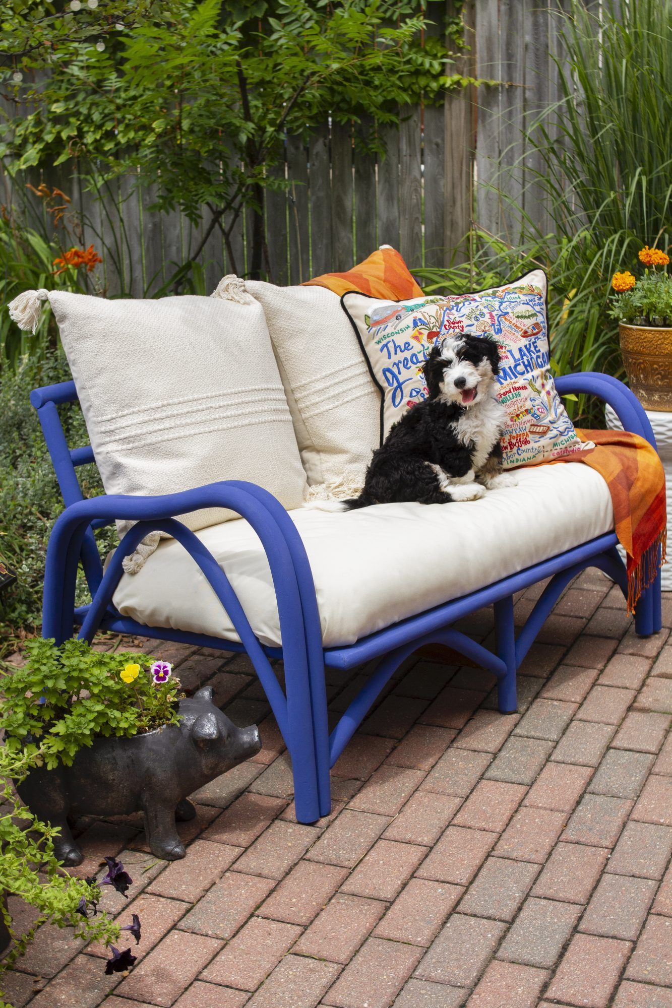 puppy sitting on an outdoor sofa