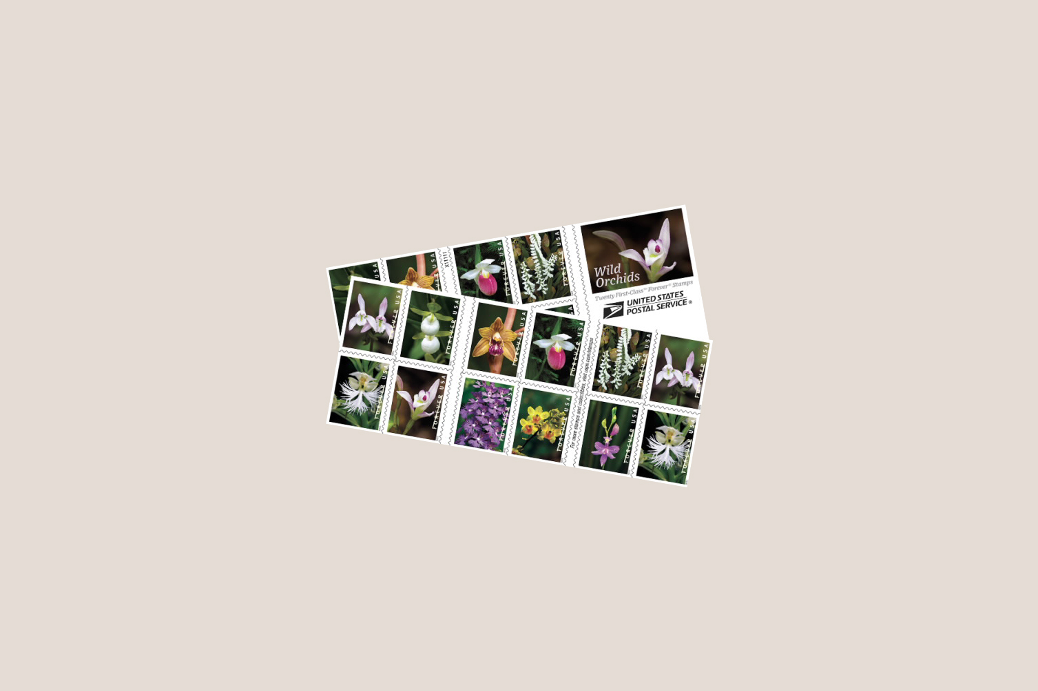 usps wild orchids stamps