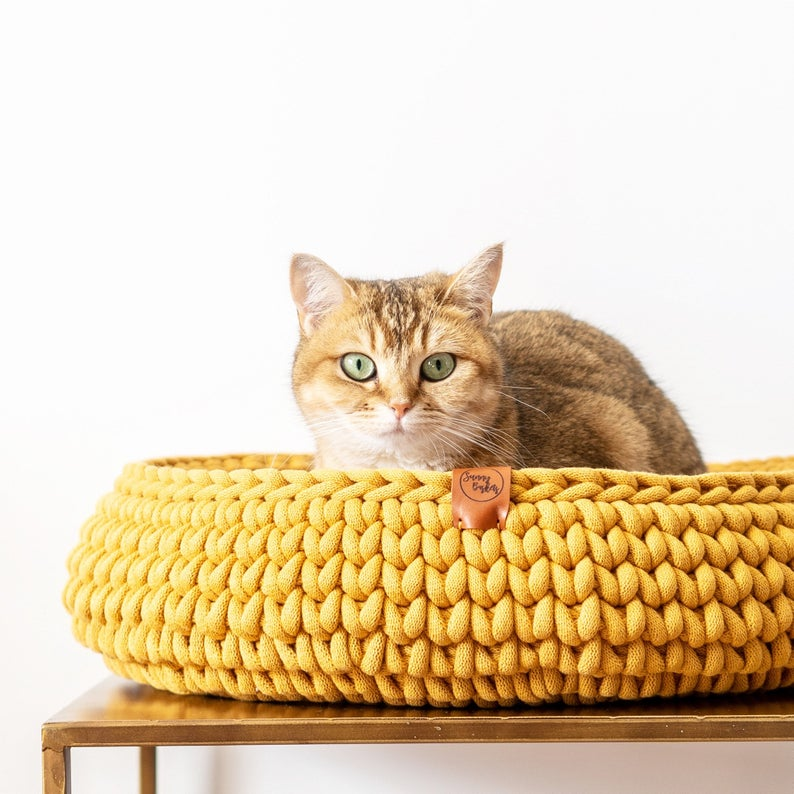 cat in yellow crocheted cat bed