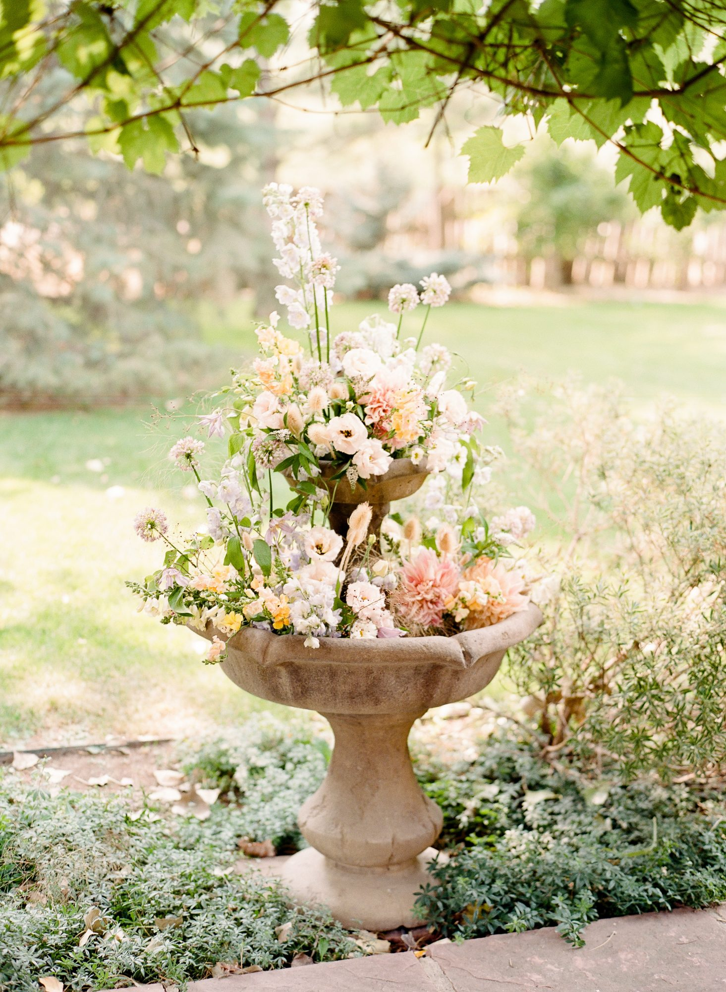bird bath filled with flowers