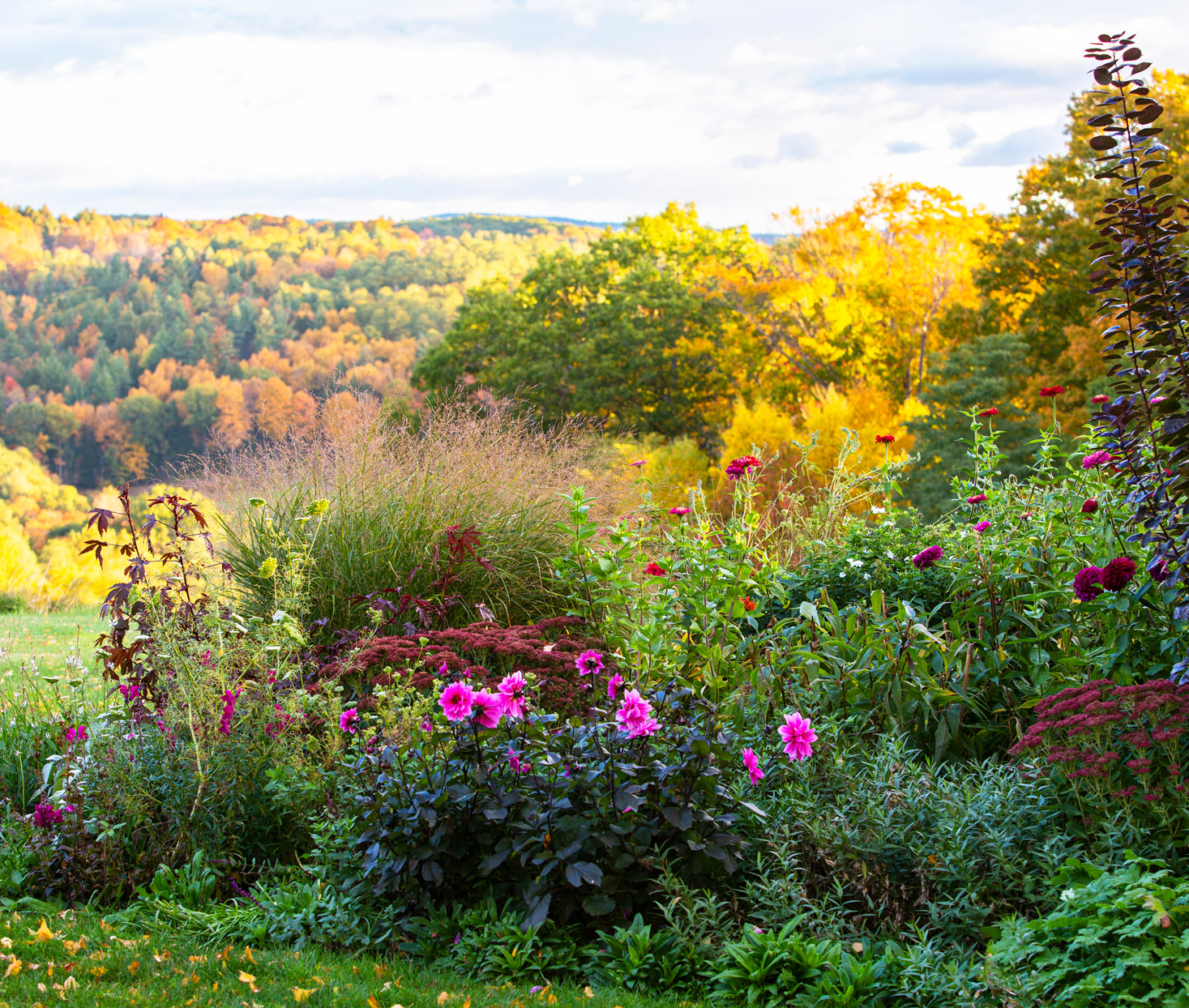 mix of foliage and flowers by gardener Siena McFarland on O'Donnell Vermont property