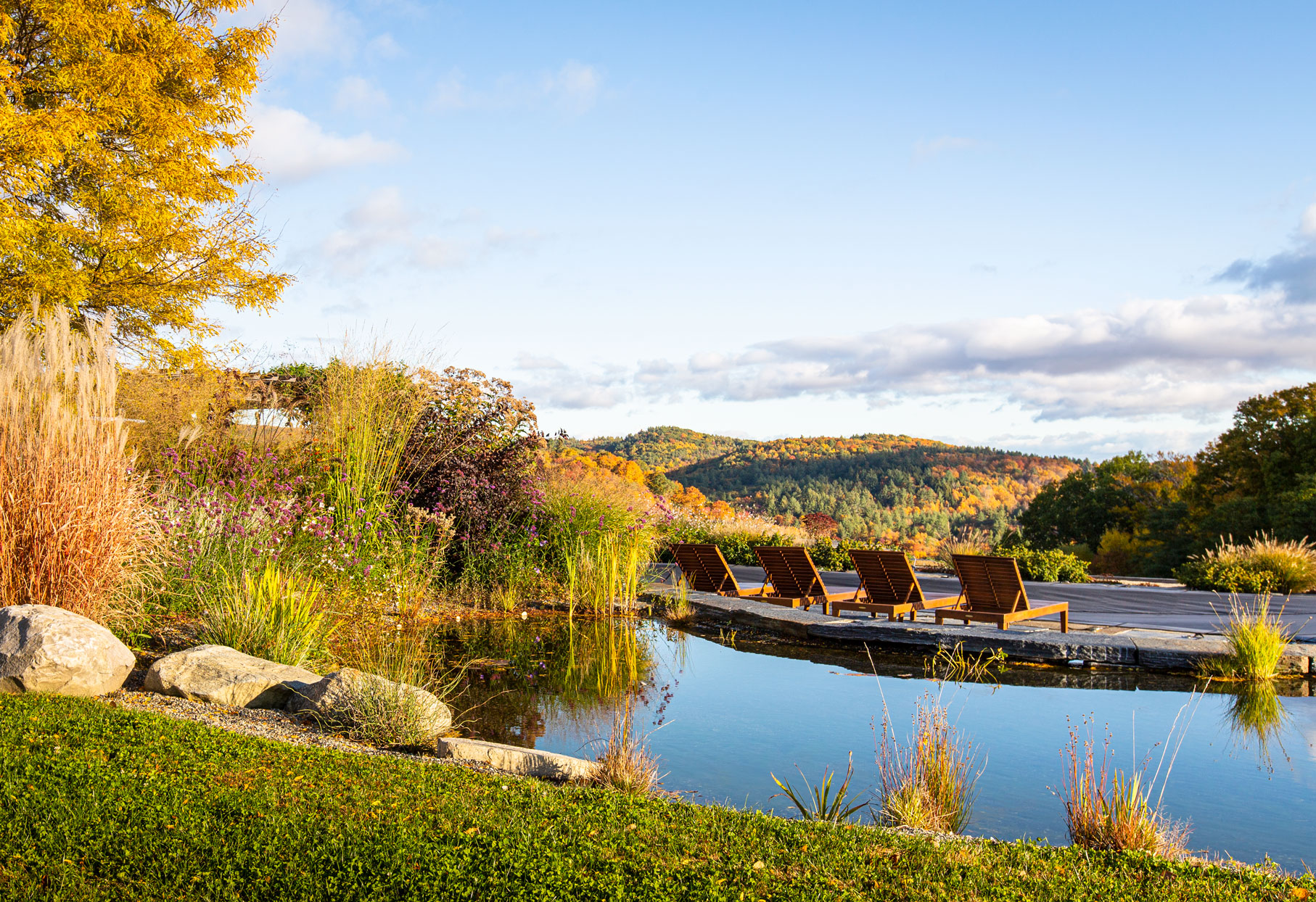 natural pond landscaped with autumnal flowers and foliage overlooking scenic Vermont area