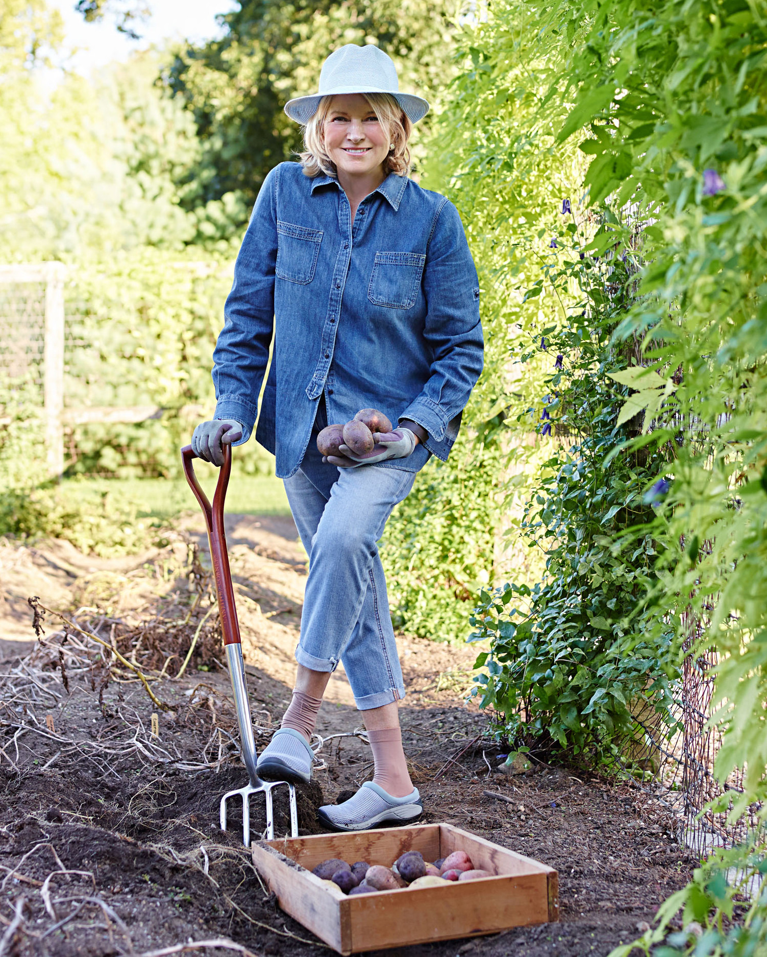 Martha Stewart harvesting potatoes in her garden