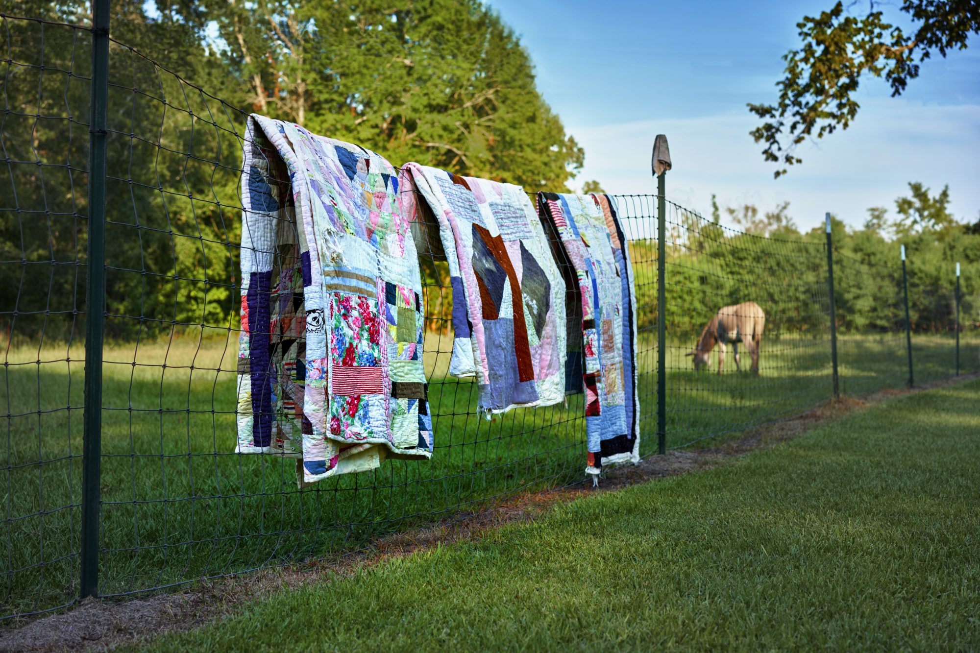 quilts hanging outside of Gee's Bend, Alabama