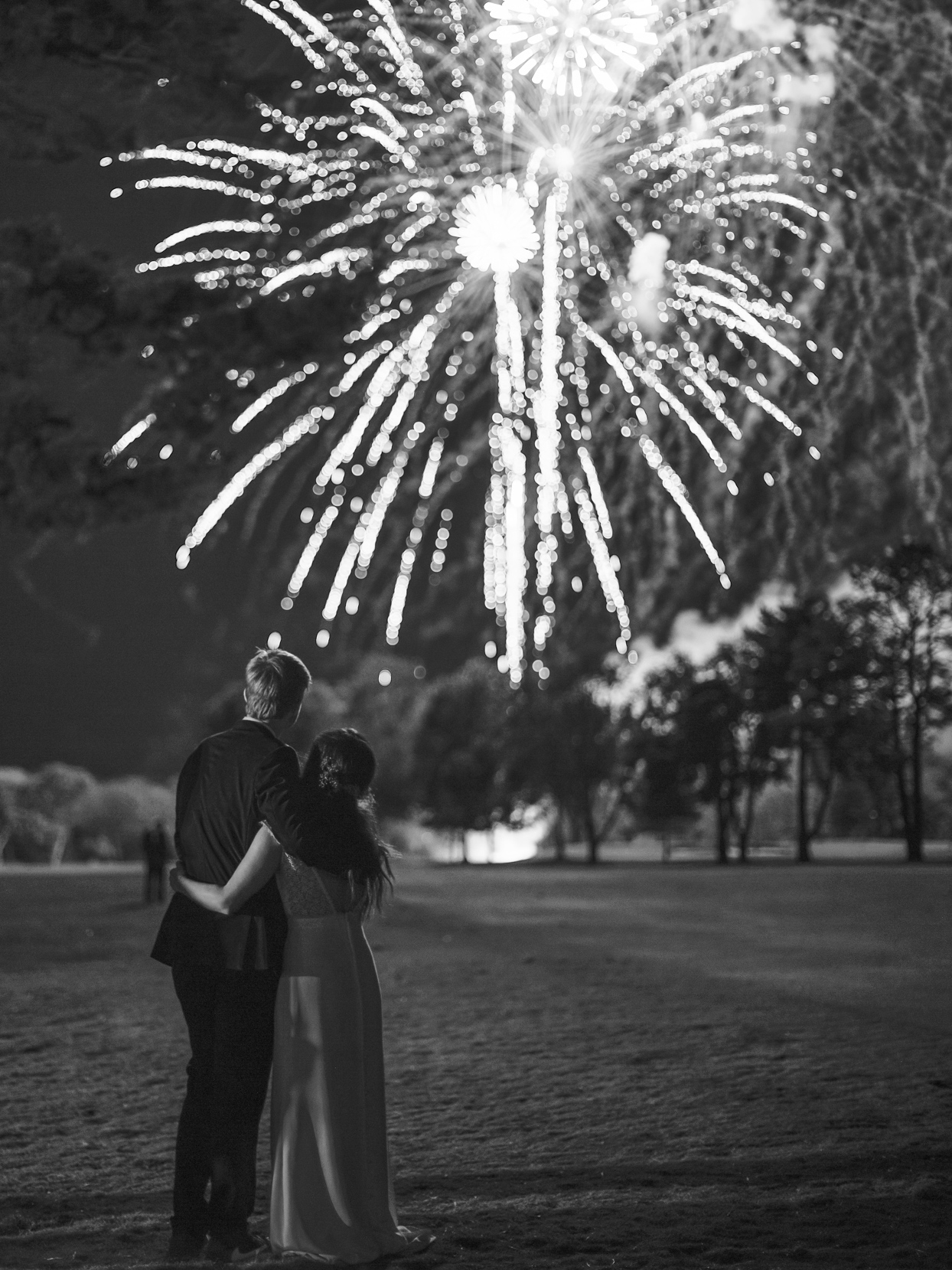 bride and groom watching fireworks over park