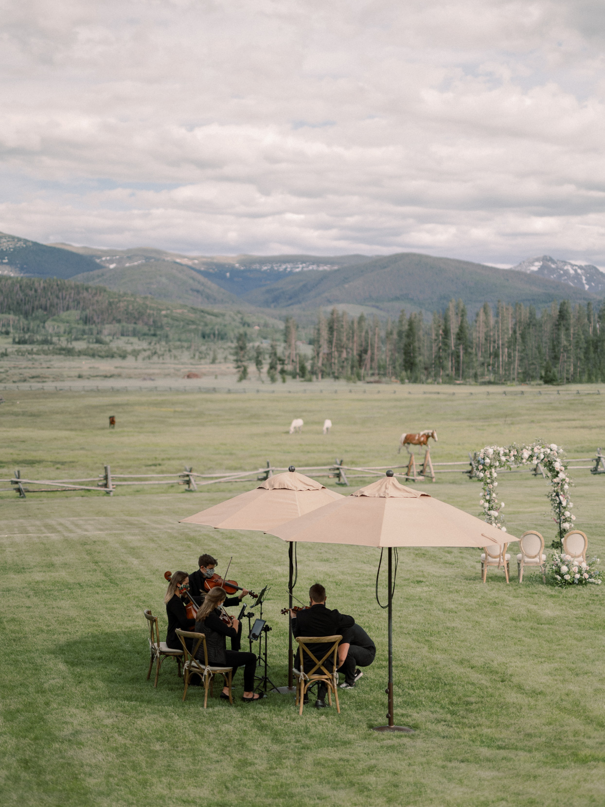 wedding musicians playing for outdoor wedding