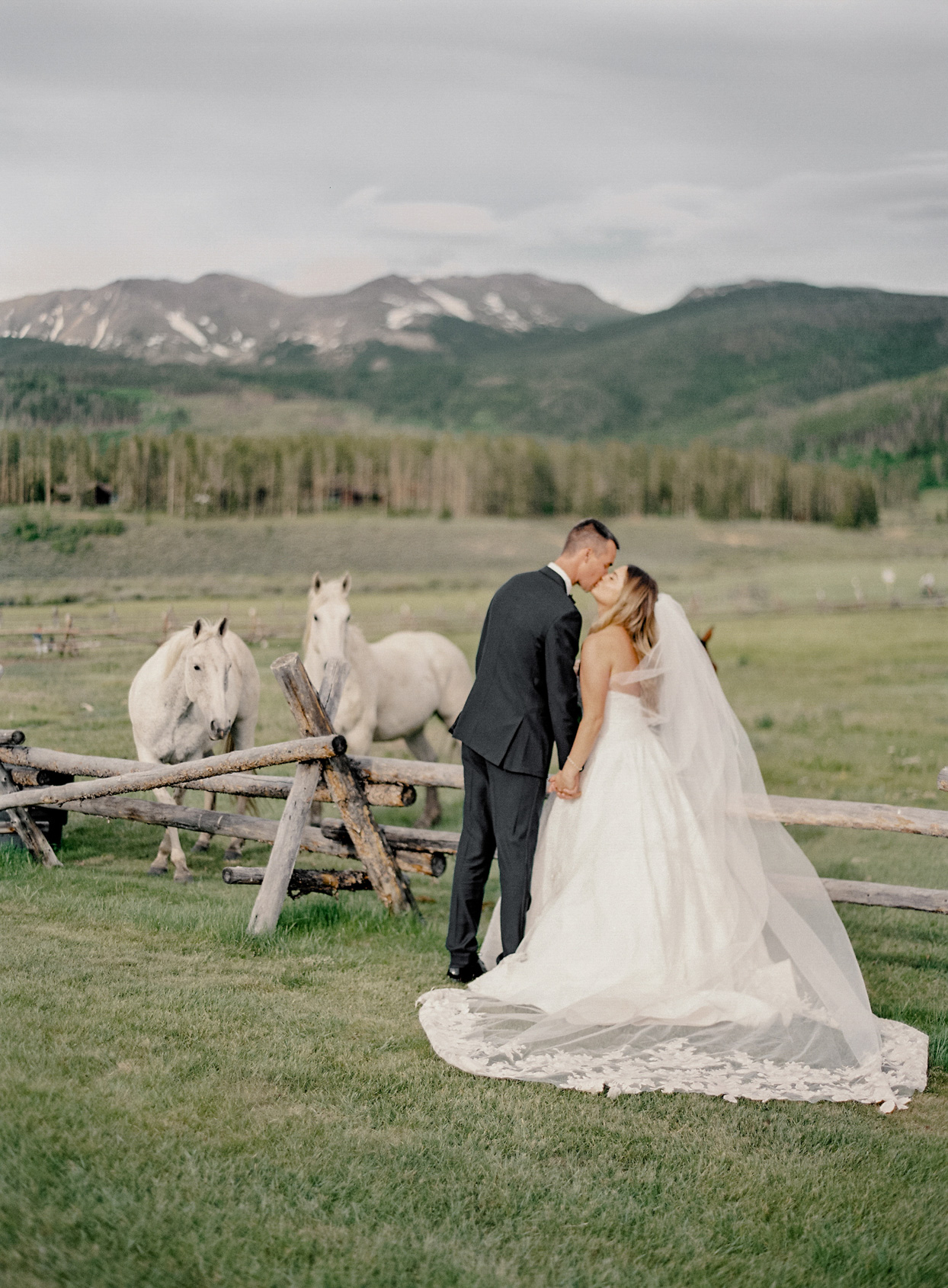 wedding couple kissing in field of horses