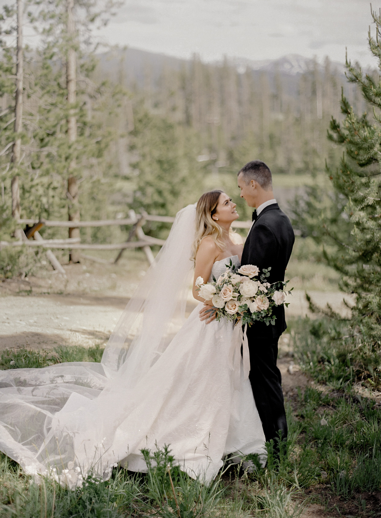 wedding couple first look amongst greenery with mountain backdrop