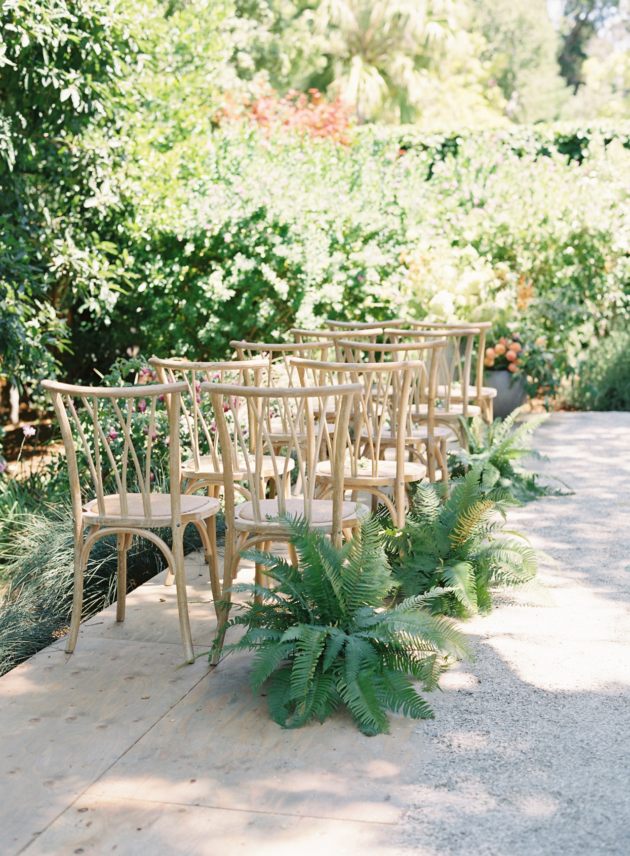 wooden chairs and ferns set up for wedding ceremony