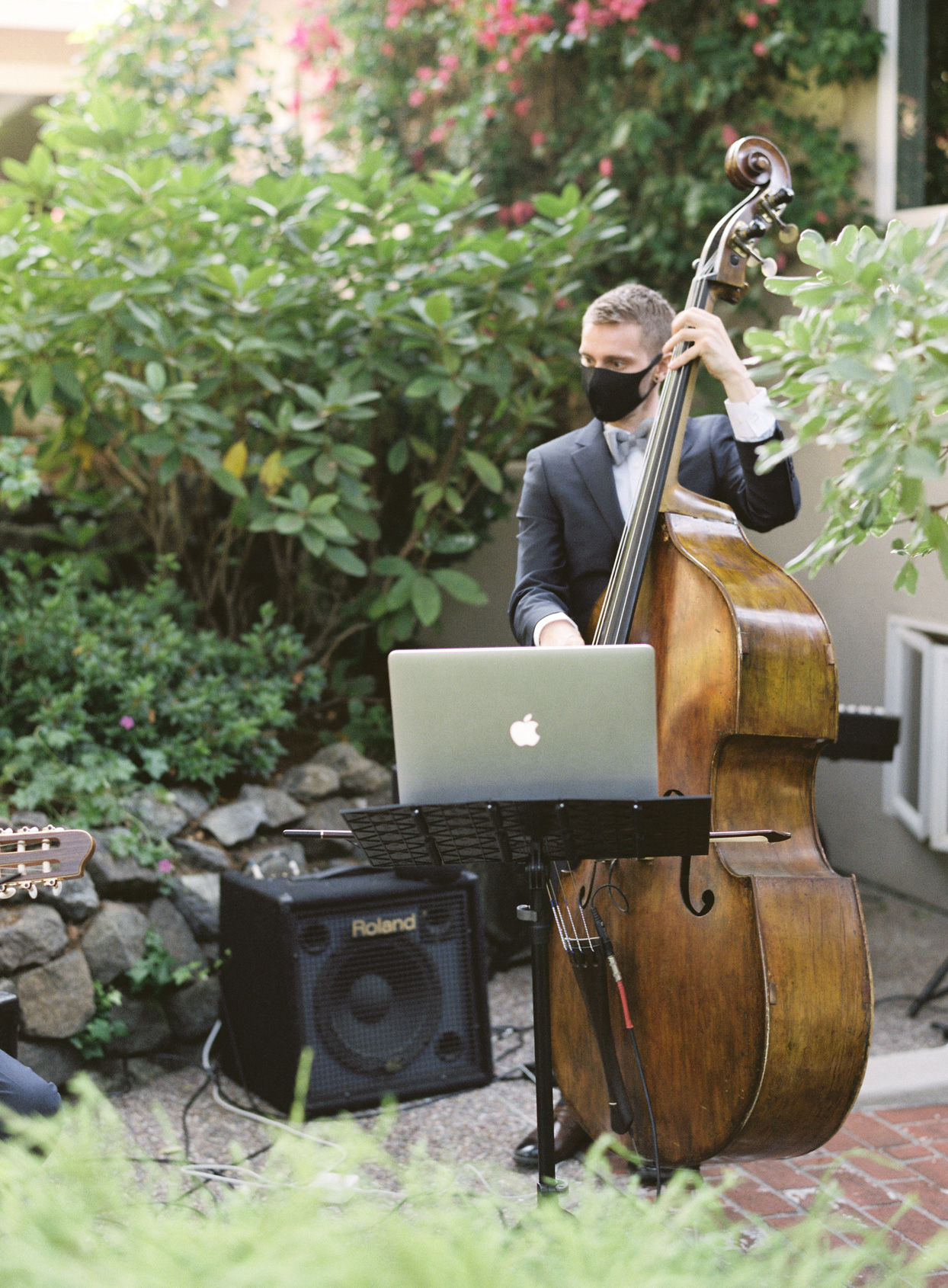 upright bass player at small wedding ceremony