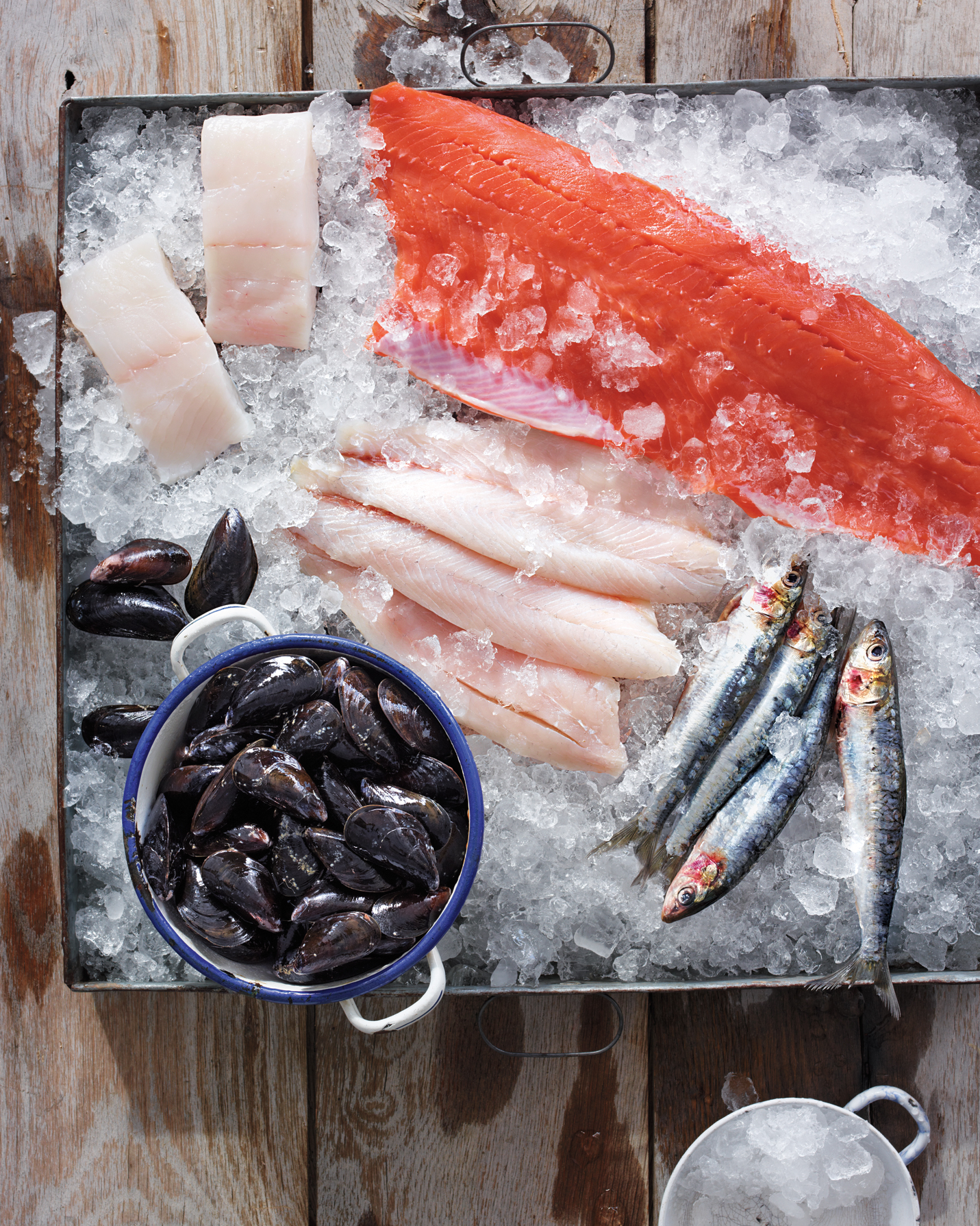 selection of sustainable fish, wild salmon, barramundi, halibut, mussels, and sardines over ice