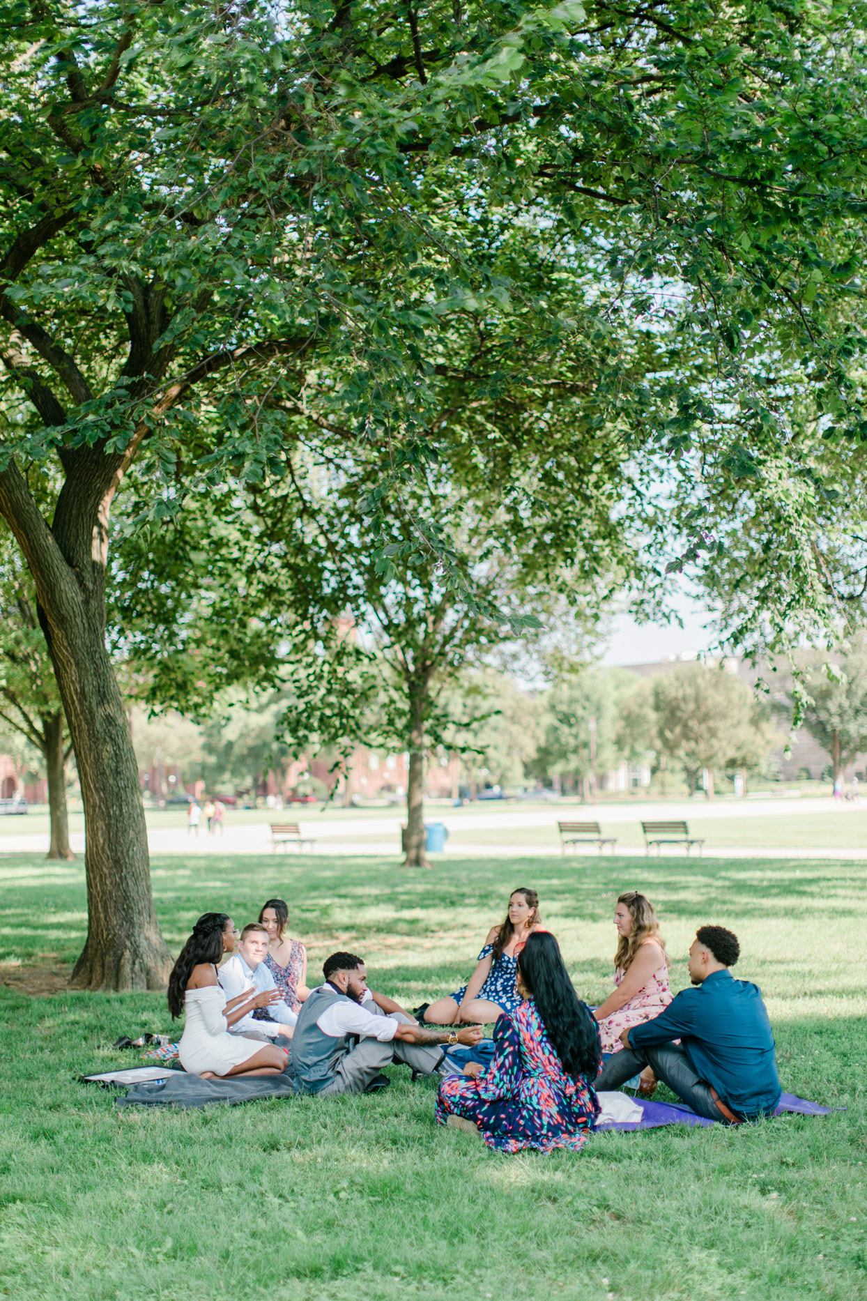 casual wedding reception picnic on national mall