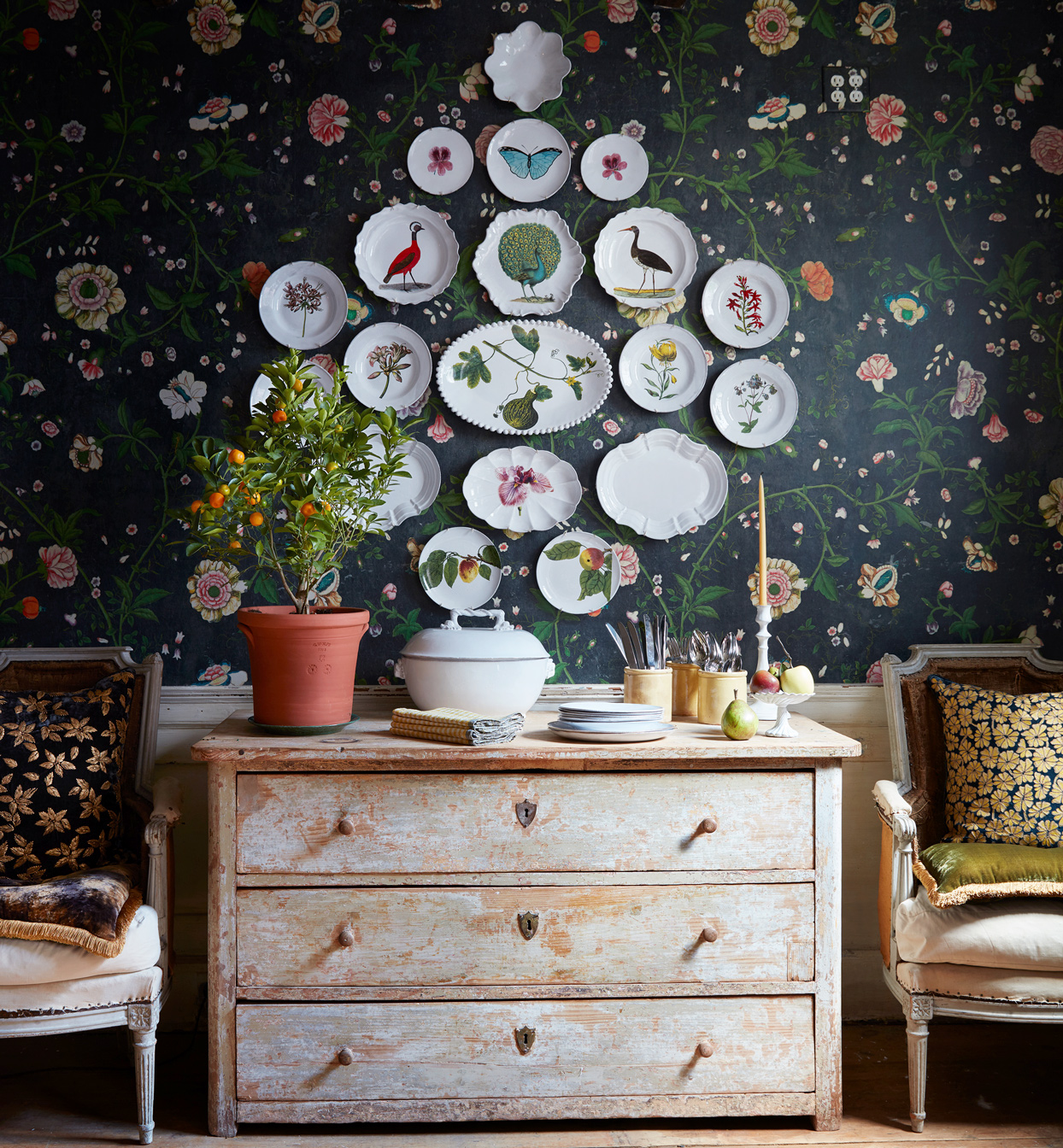 ceramic plates with plant and animal designs on wall