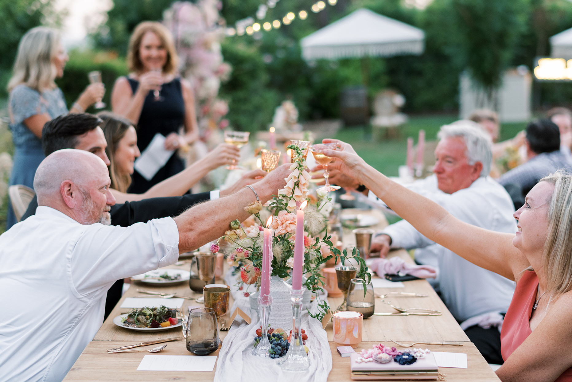 guests cheers during backyard reception toasts