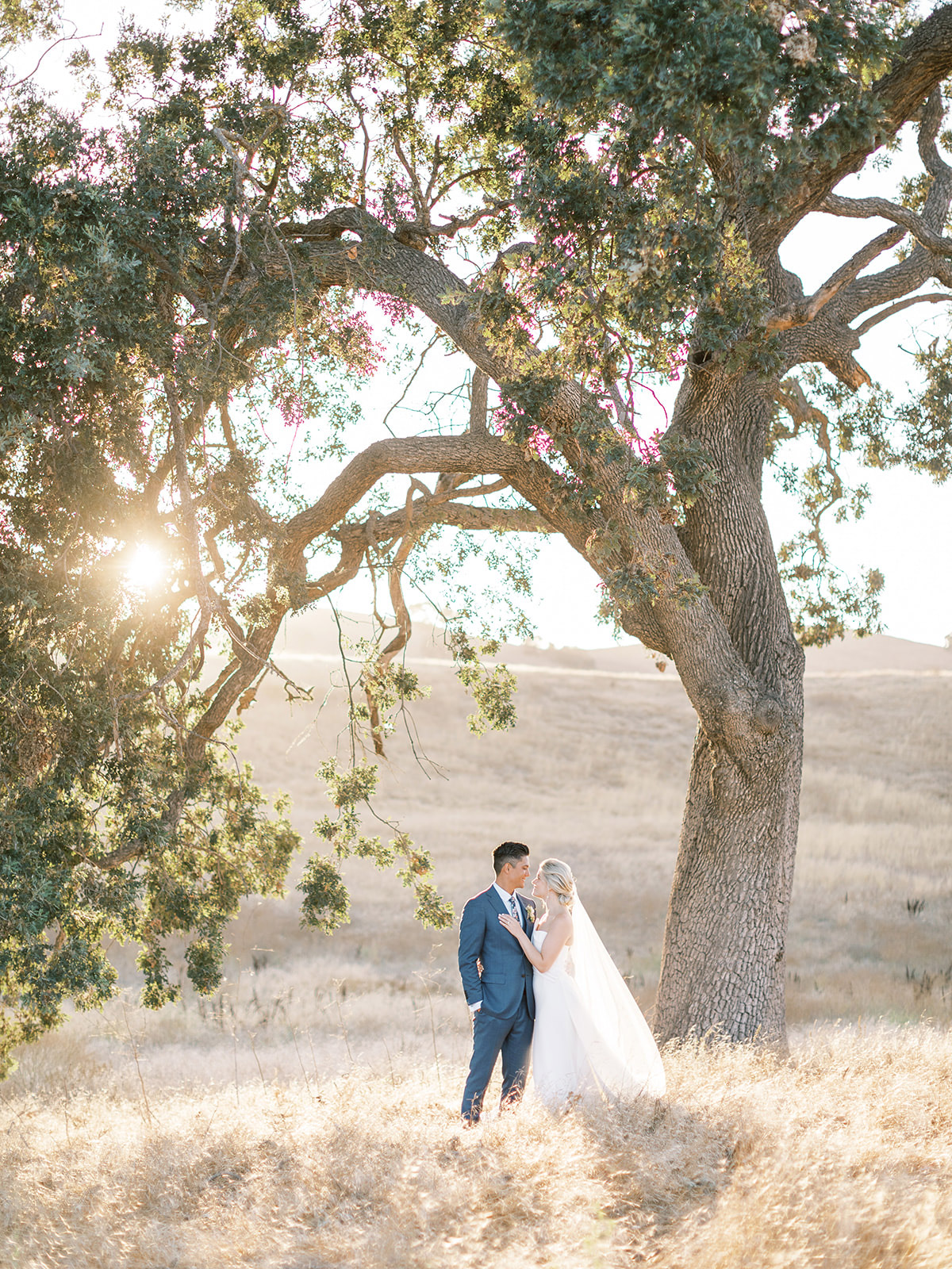 bride and groom smiling at each other outside under large tree
